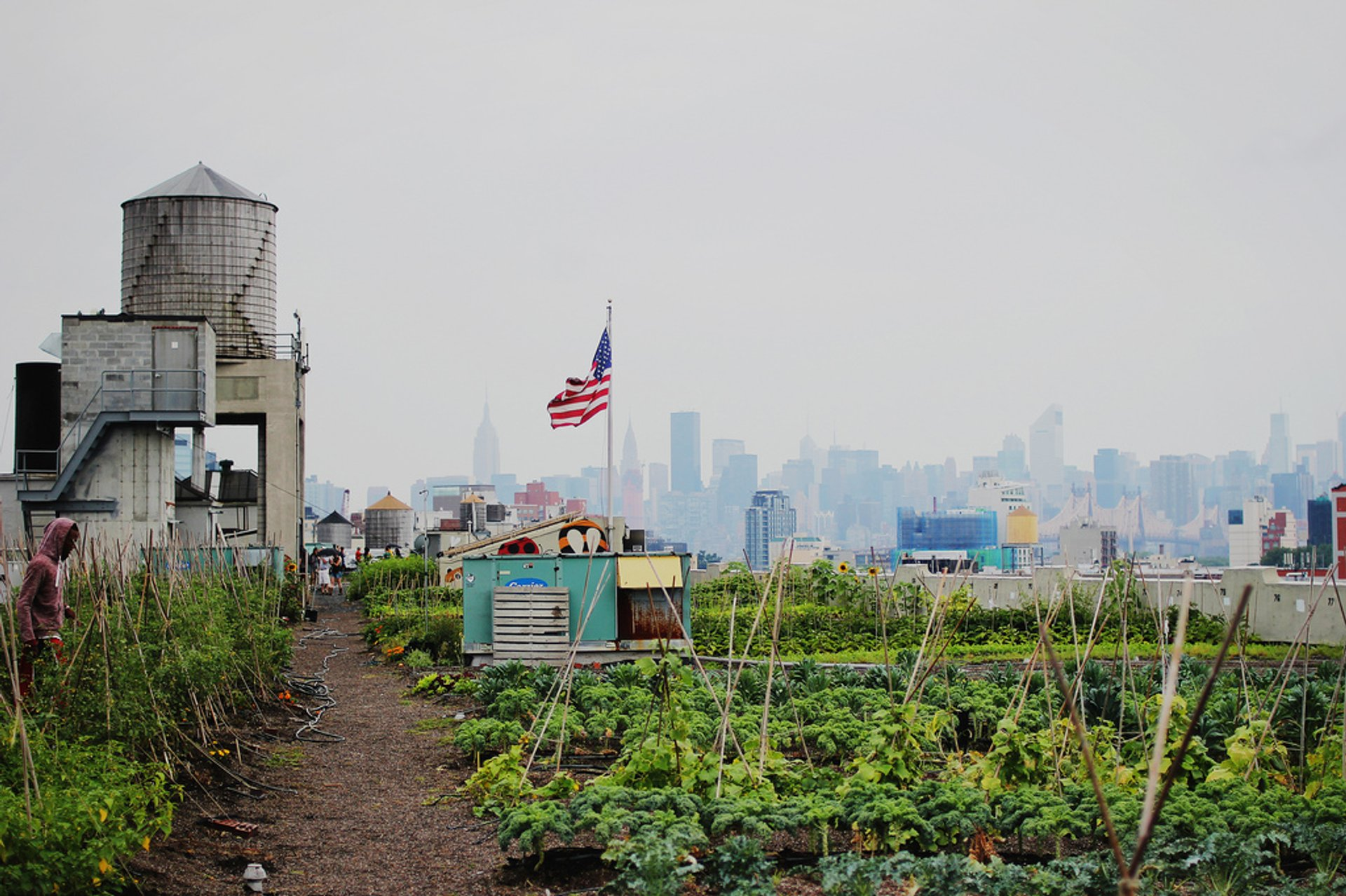 Rooftop Gardens and Farms in New York - Best Season 2020
