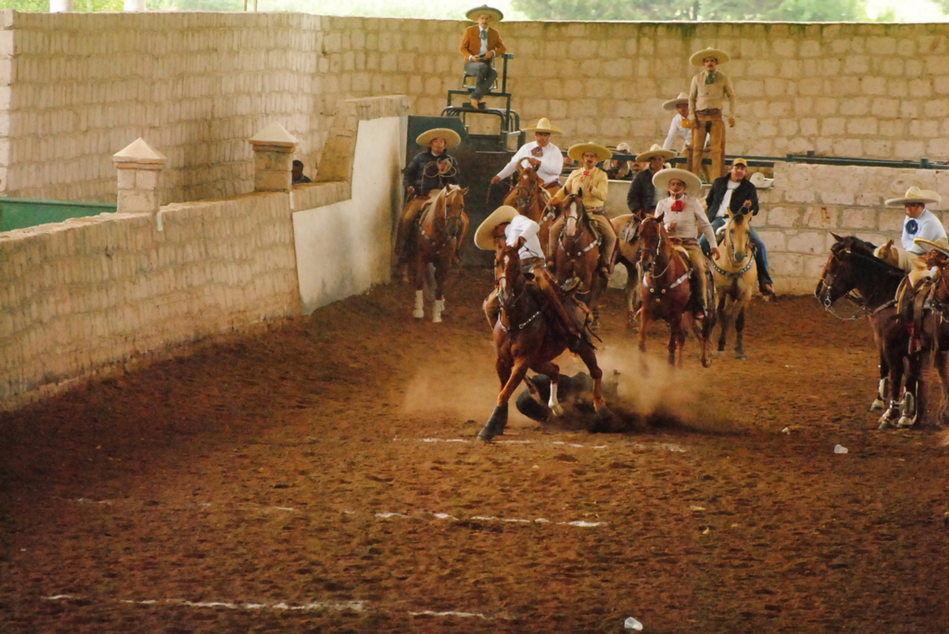 Best time for Mexican Rodeos or Charreadas in Mexico 2019