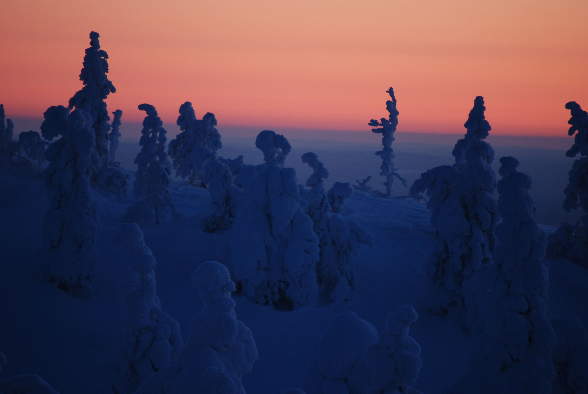 Kaamos: the Polar Night in Finland 2020 - Best Time