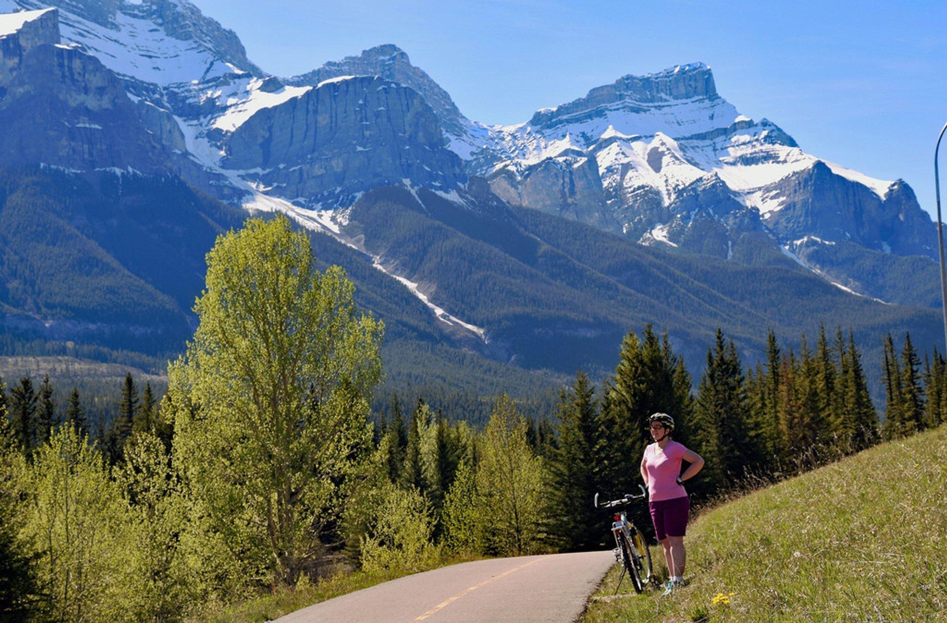 Best time for Mountain Biking in Banff & Jasper National Parks 2020