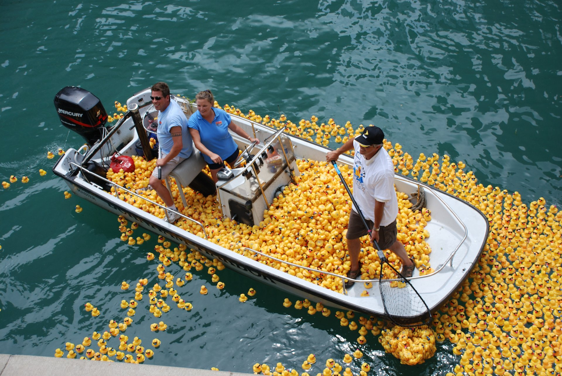 Yellow plastic ducks in Chicago River 2020