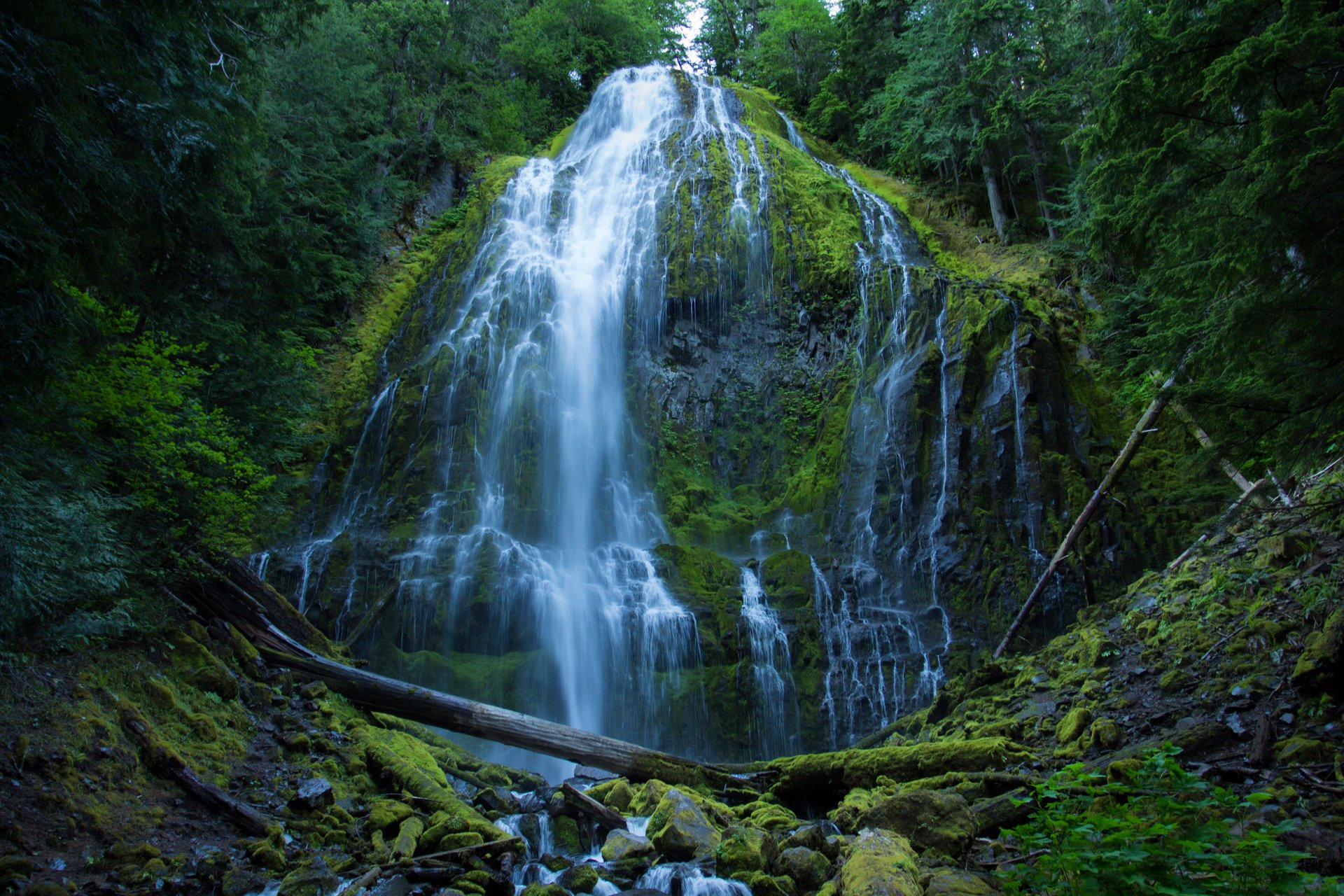 Proxy Falls in Oregon 2020 - Best Time
