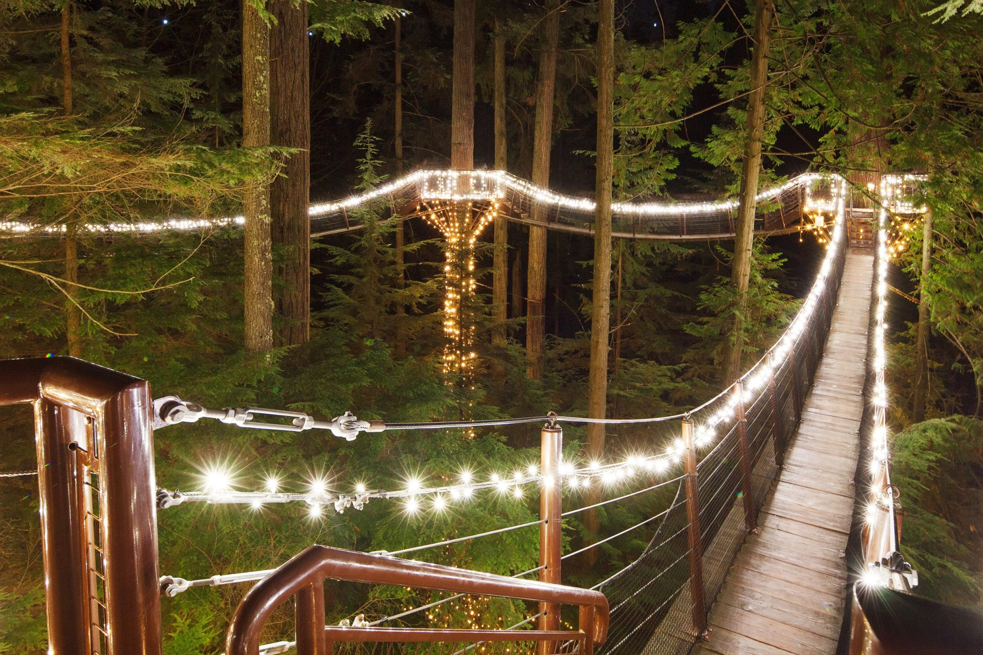 Best time for Canyon Lights in Vancouver 2020