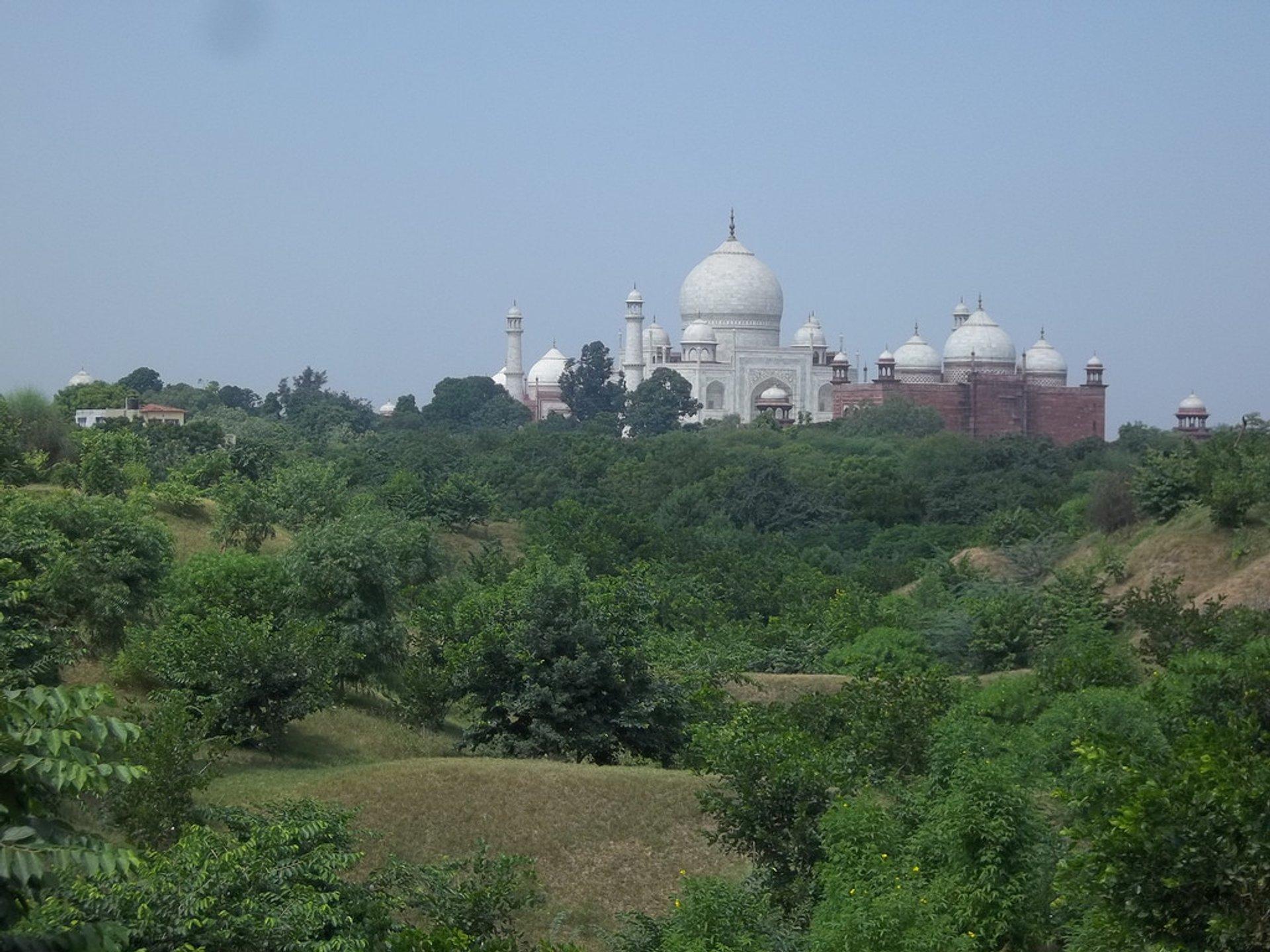 Taj Mahal from Nature Walk Trail 2020