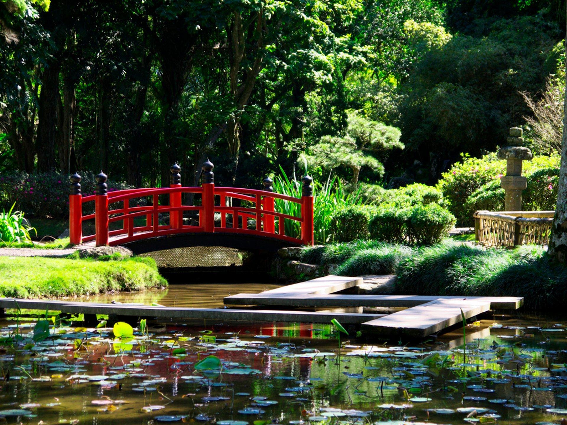 Best time to see Botanical Garden or Jardim Botânico in Rio de Janeiro 2020