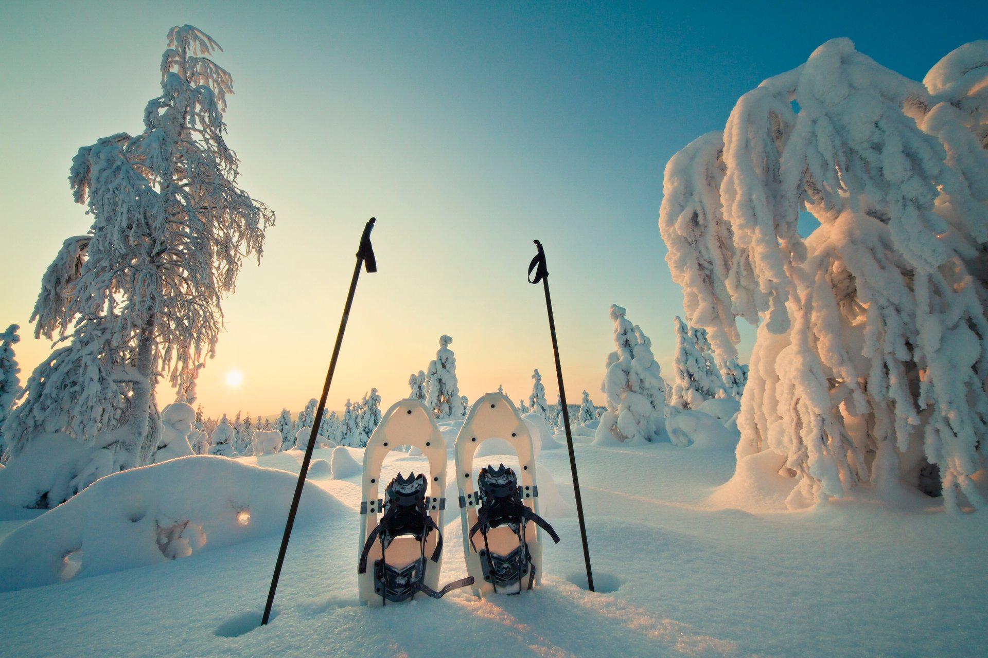 Snowshoeing in Finland 2020 - Best Time