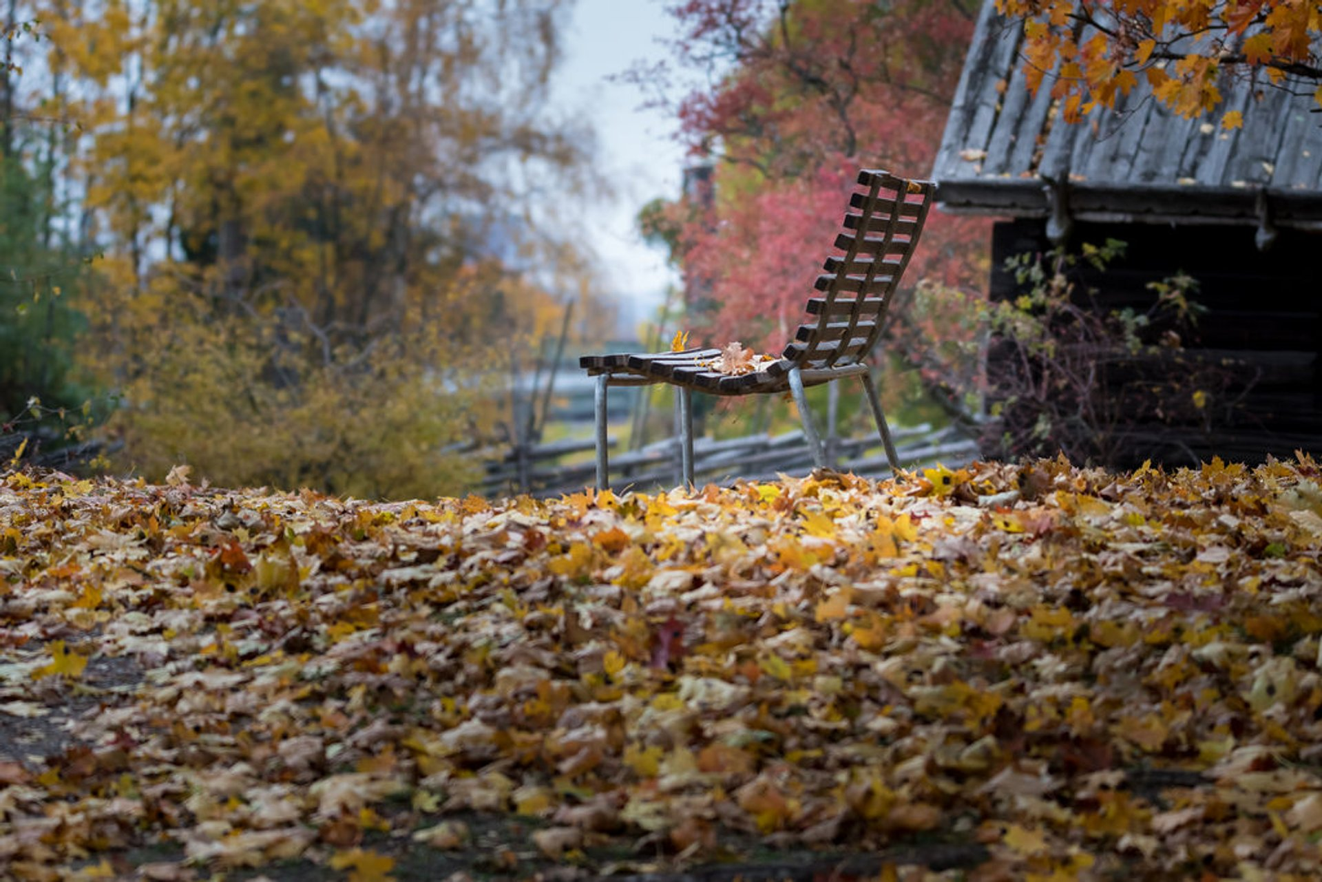 Best time for Autumn in Sweden 2019