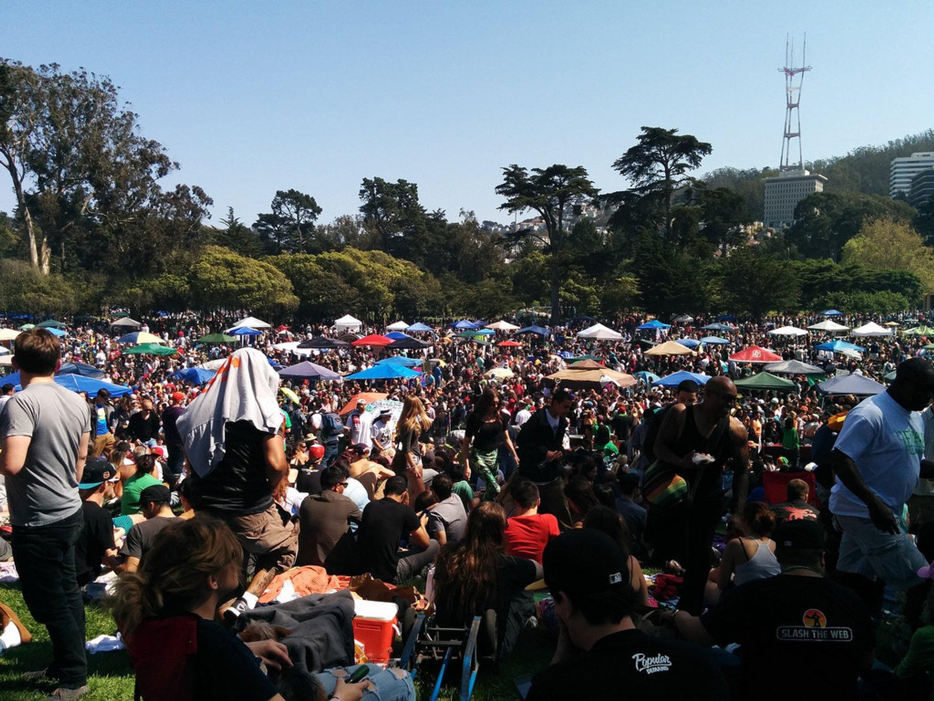 420 Hippie Hill in San Francisco - Best Time