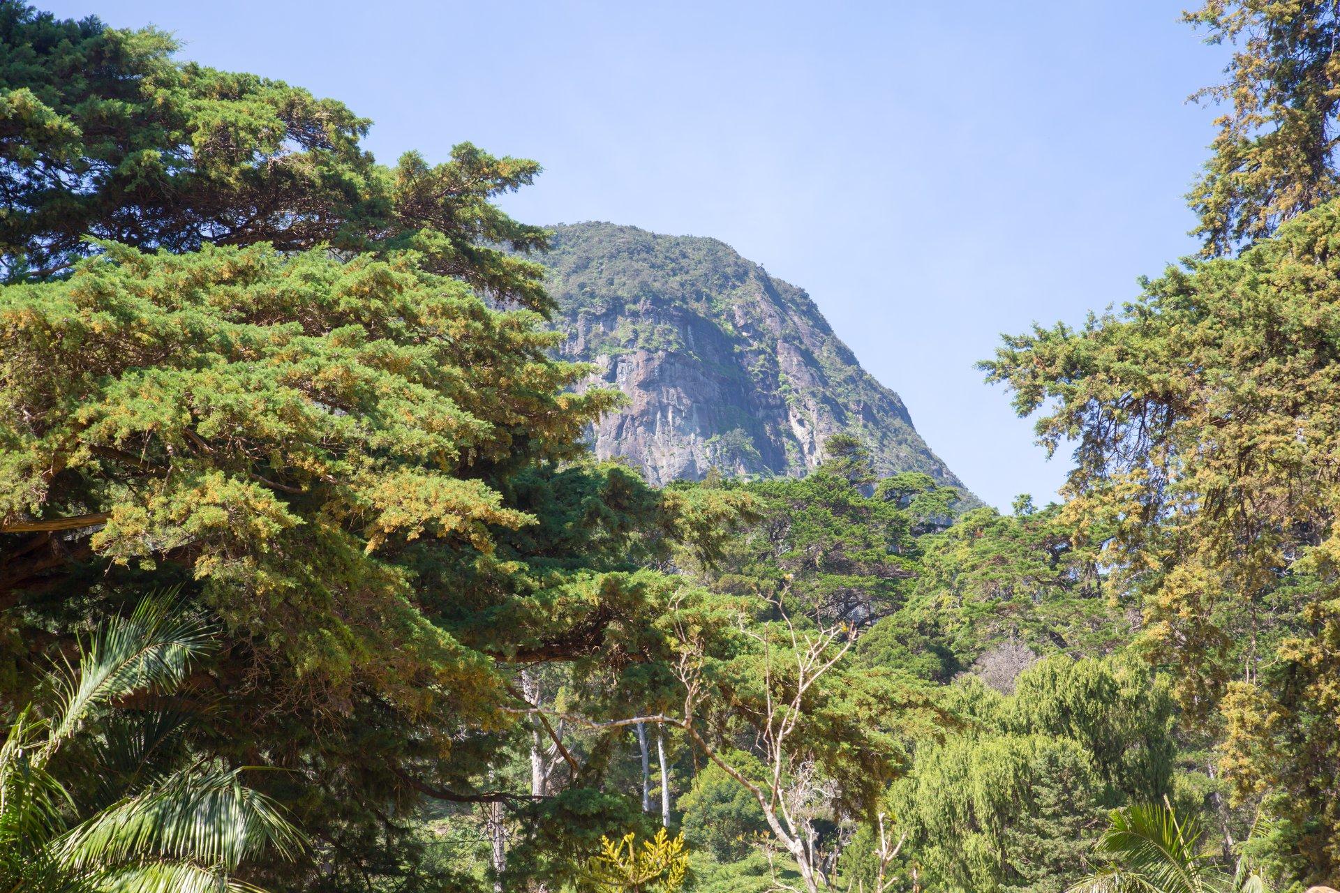 Hakgala Botanical Gardens in Sri Lanka - Best Season 2020