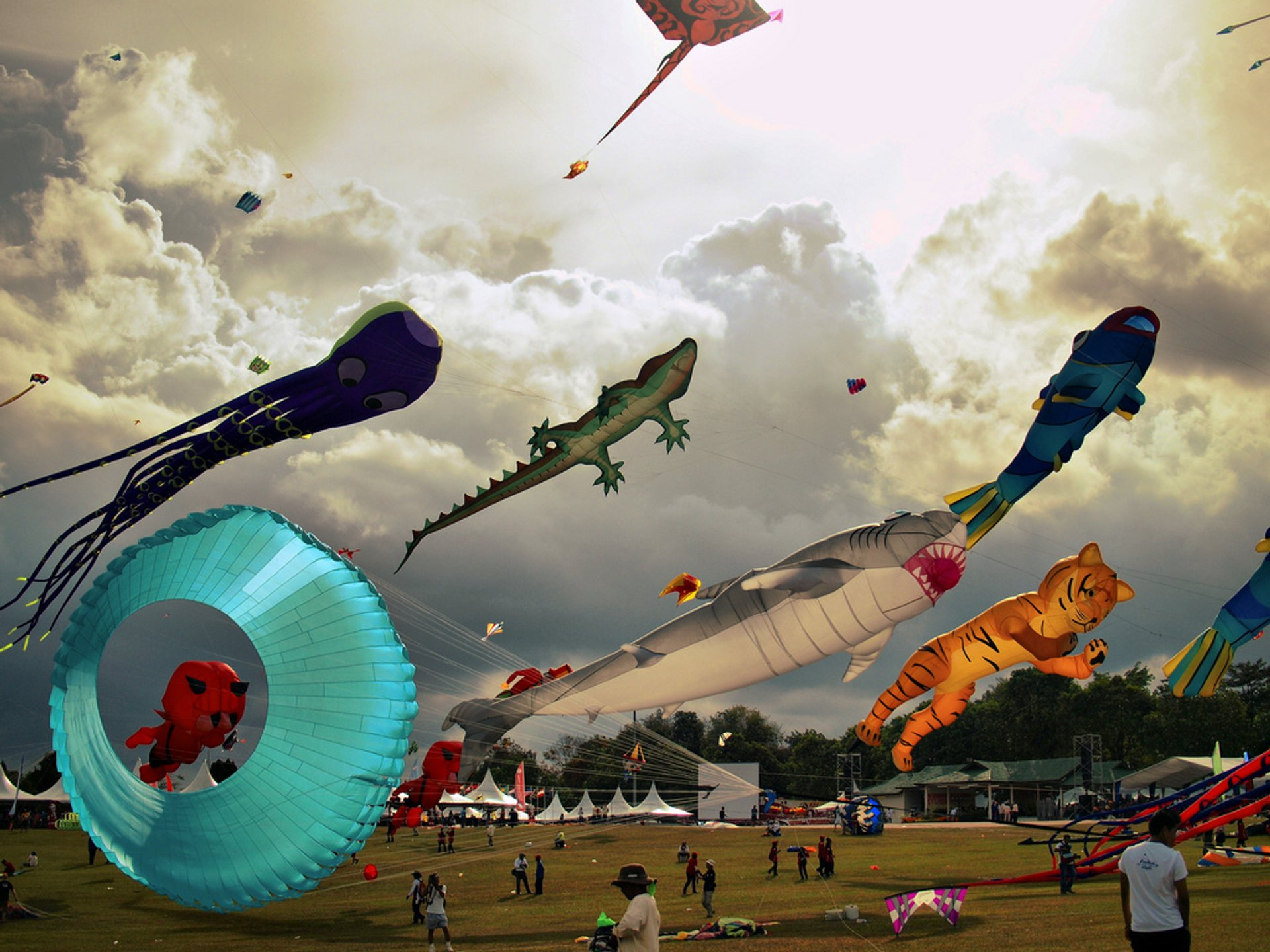 Traditional Kite Flying in Malaysia - Best Season