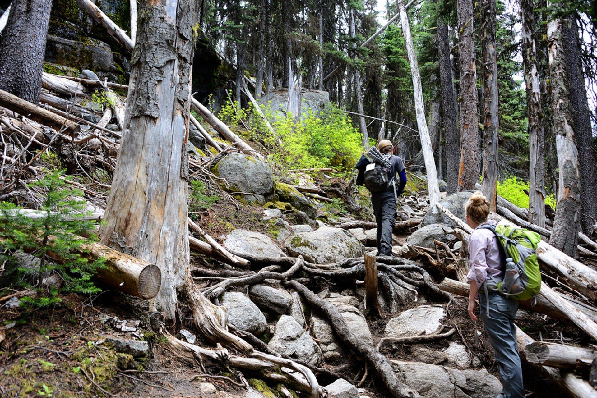 Colchuck Lake Trail 2020