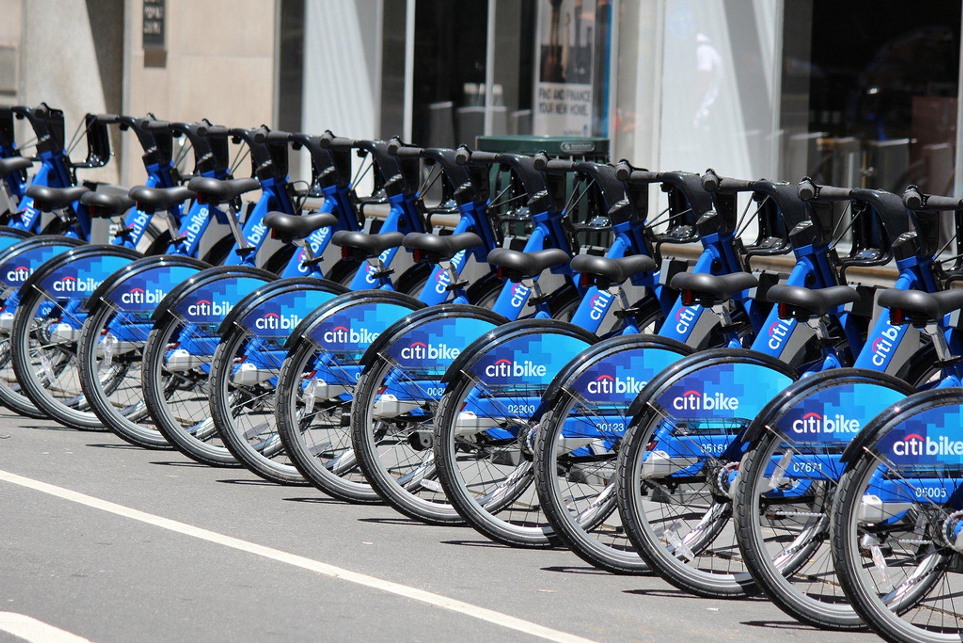 Citi Bike 2020