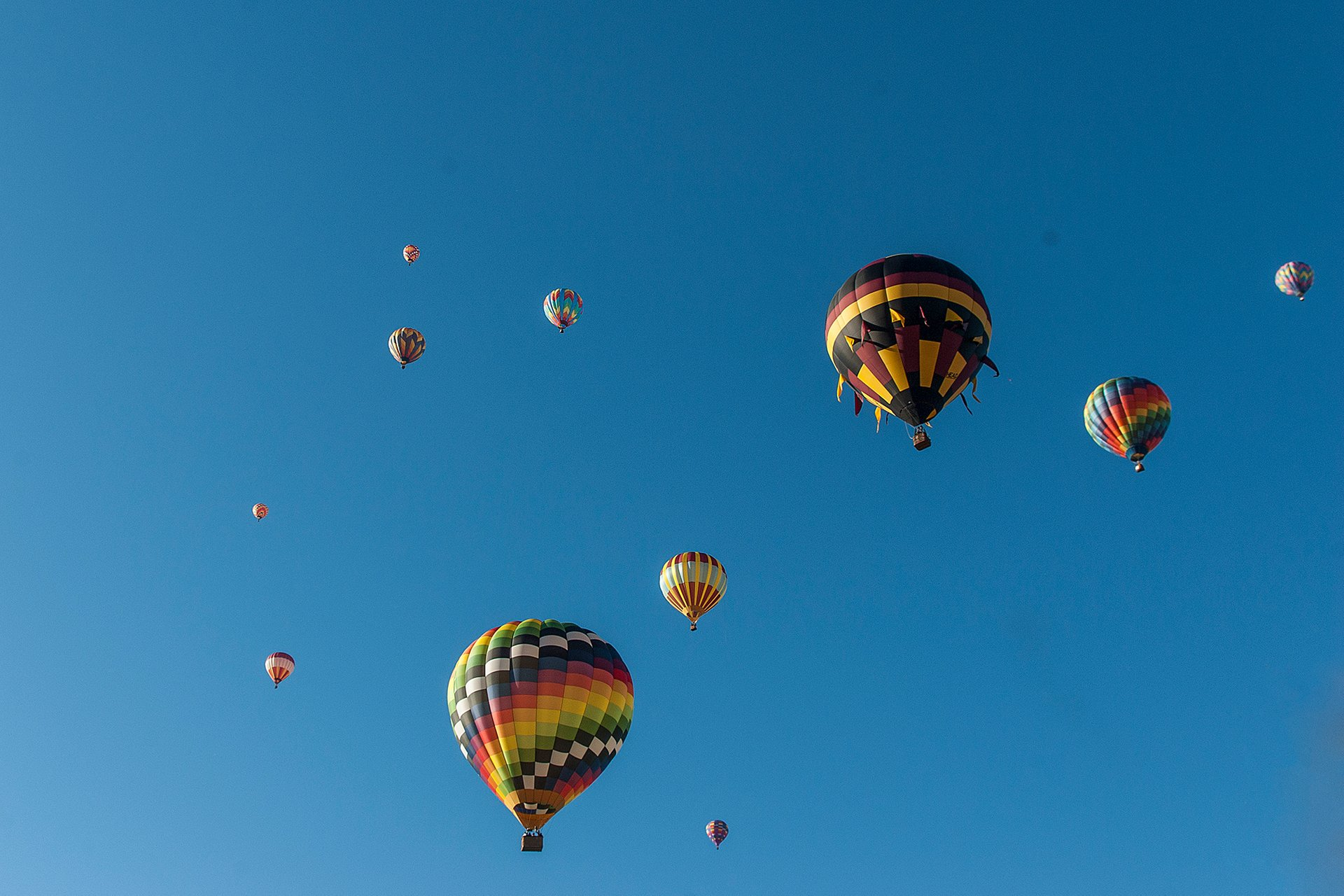 Best time to see Carolina Balloon Fest 2020