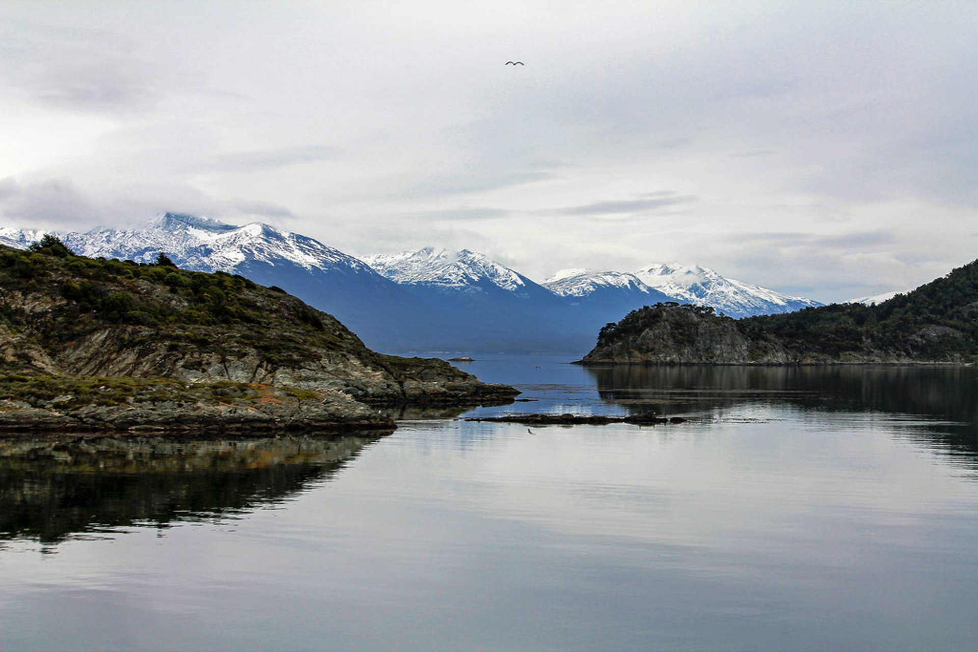 Beagle Channel in Patagonia - Best Time