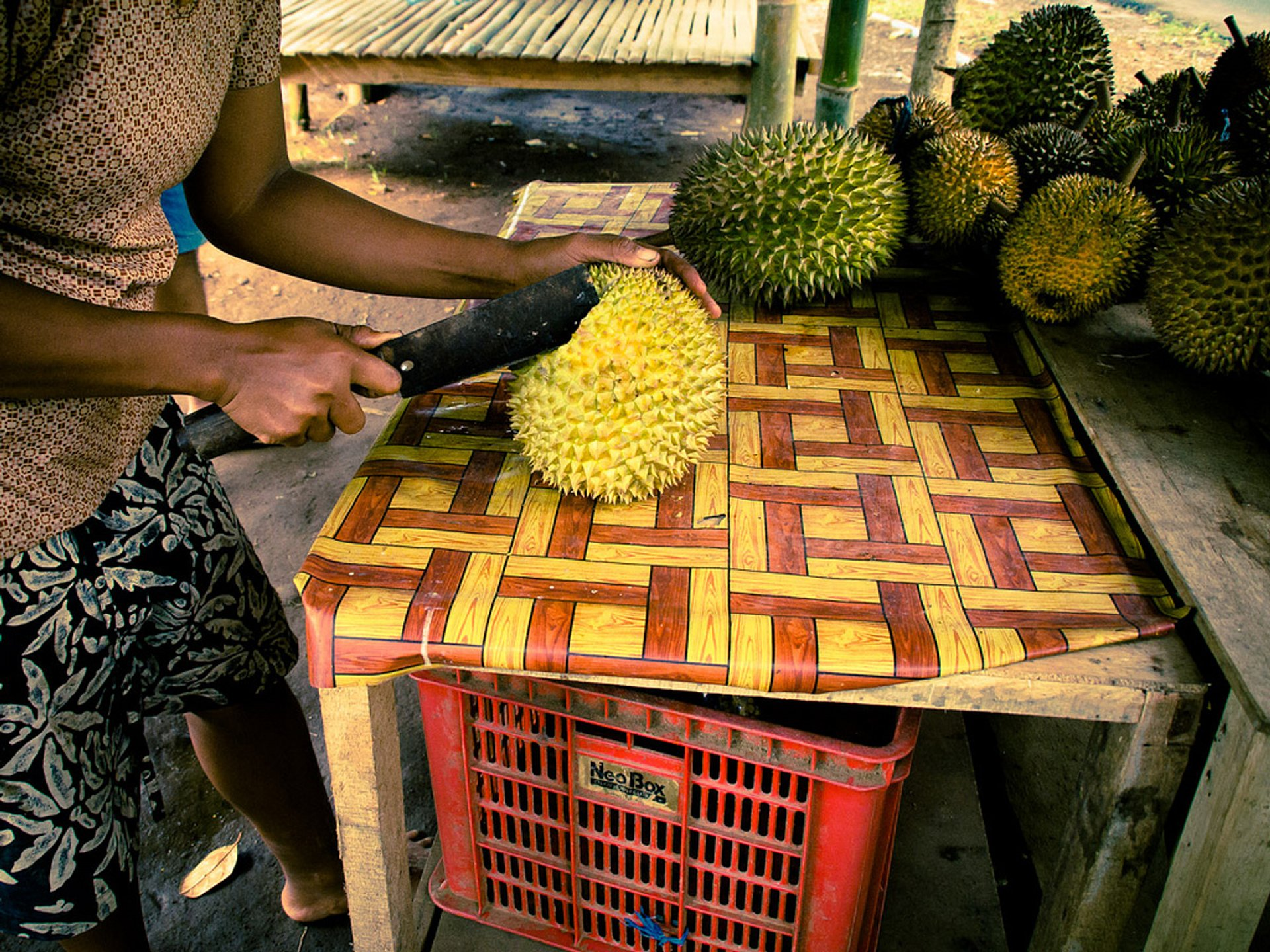 Best time for Durian in Bali