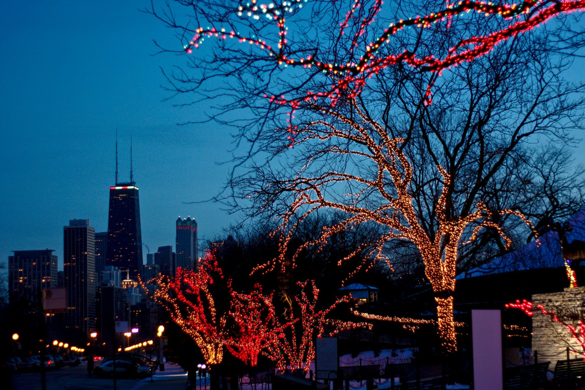 ZooLights in Chicago 2020 - Best Time