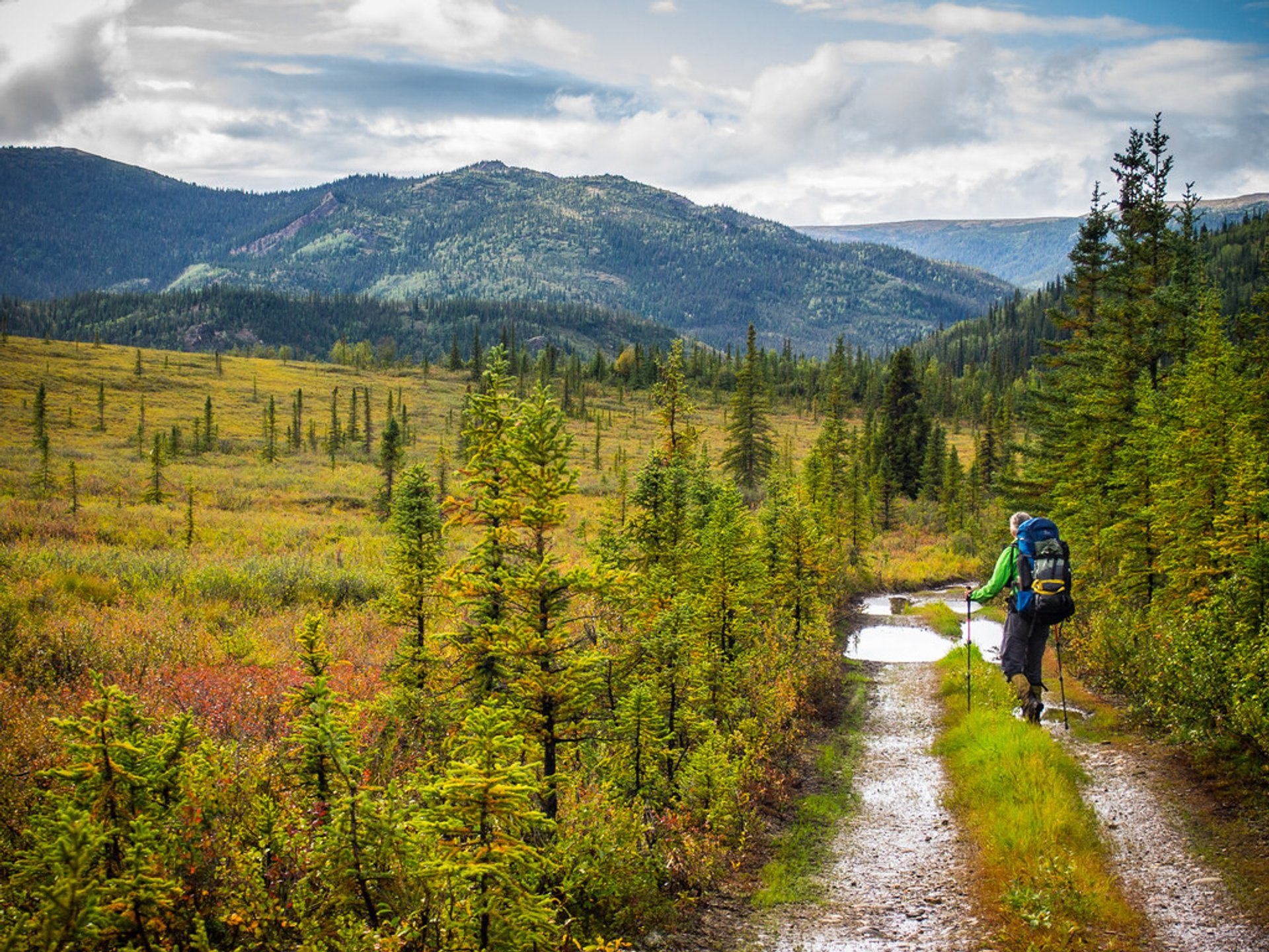 Hiking the Stampede Trail 2020