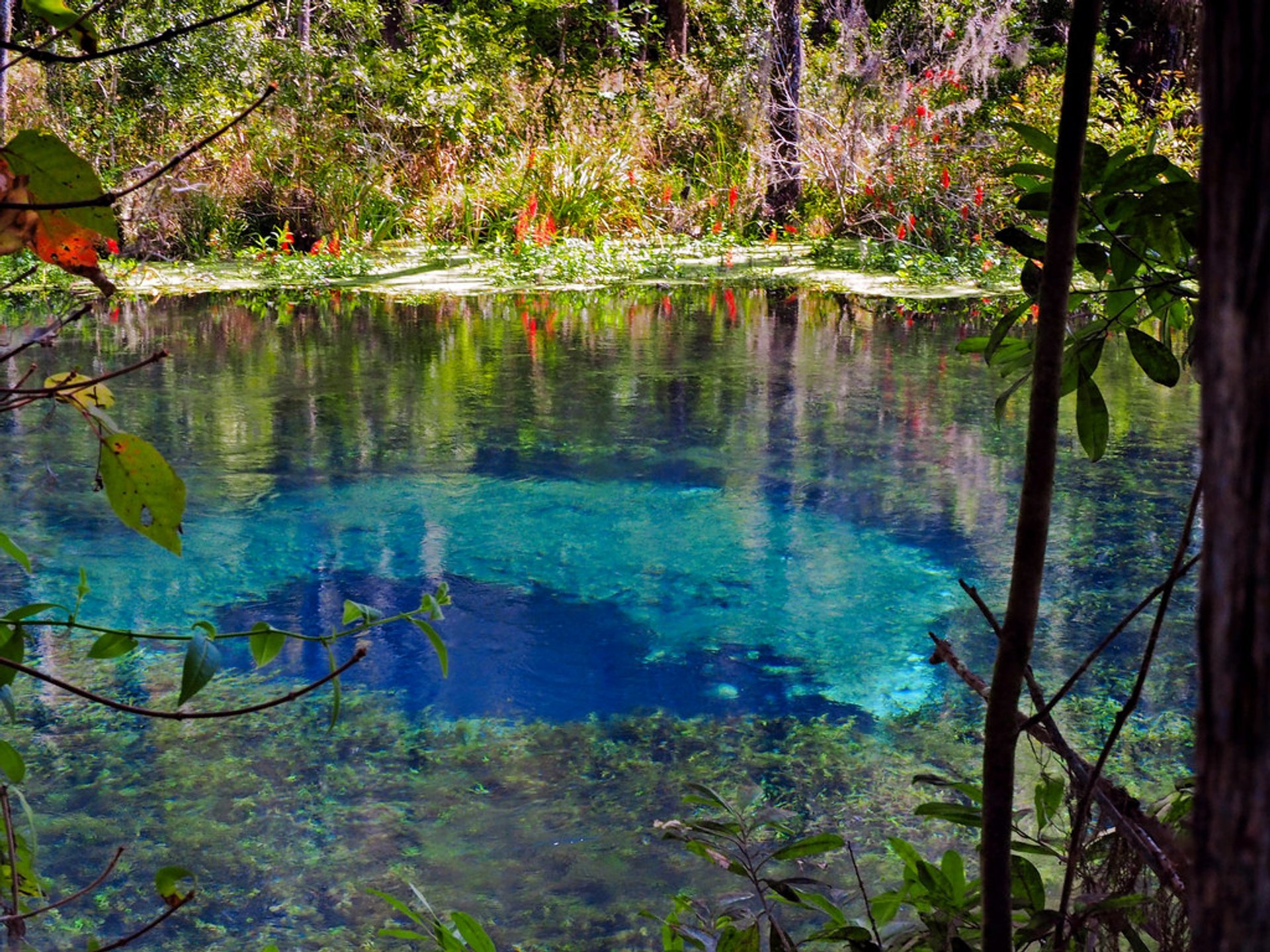 Ichetucknee Blue Hole in Florida - Best Season 2020
