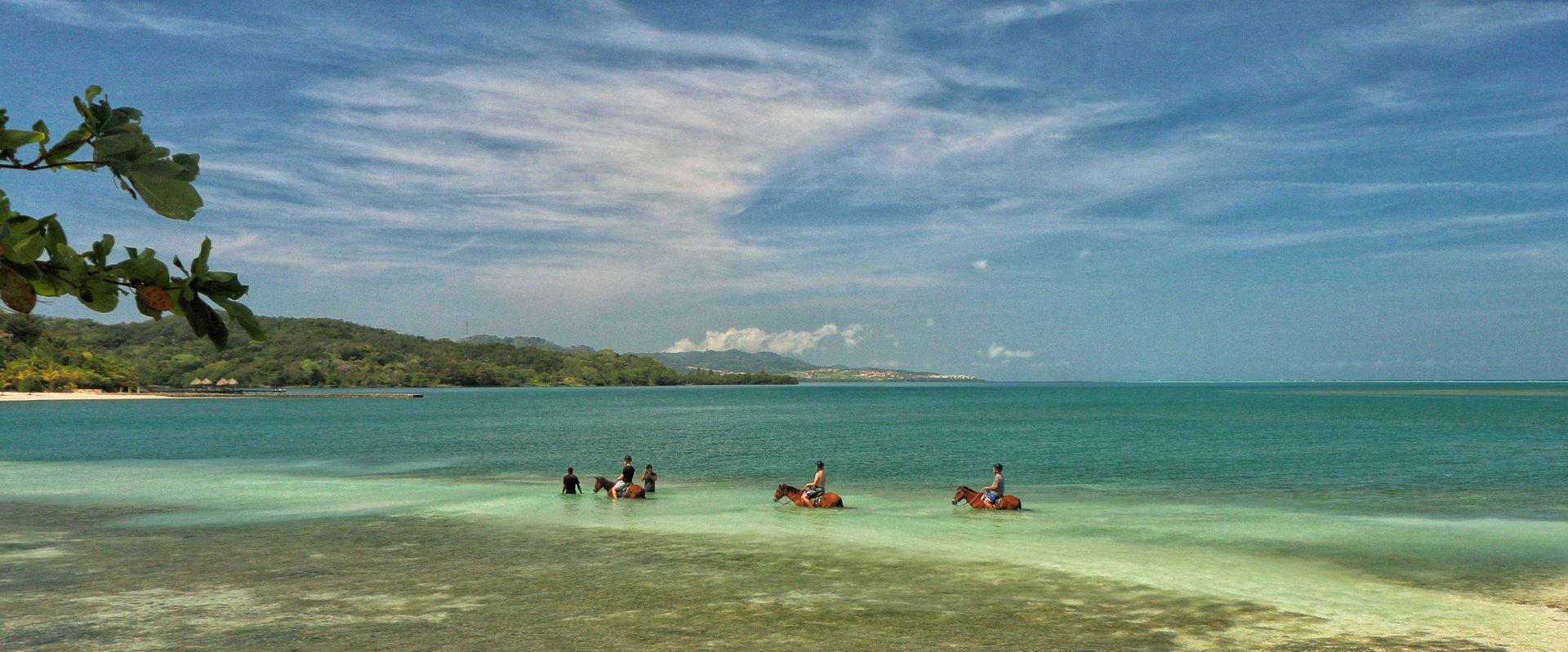 Horseback Riding on Roatán in Honduras - Best Season 2019