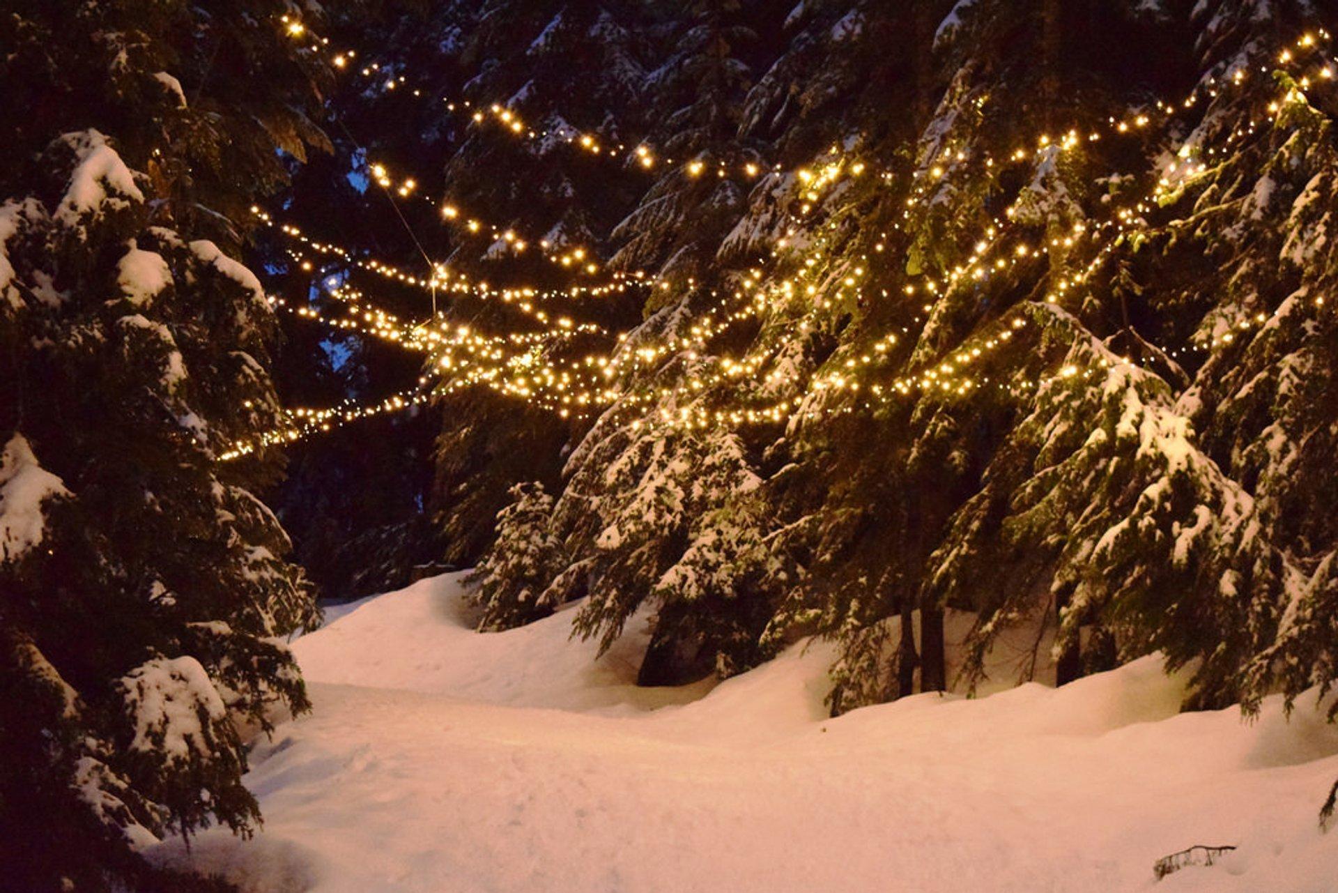 Grouse Mountain Light Walk in Vancouver - Best Season 2020