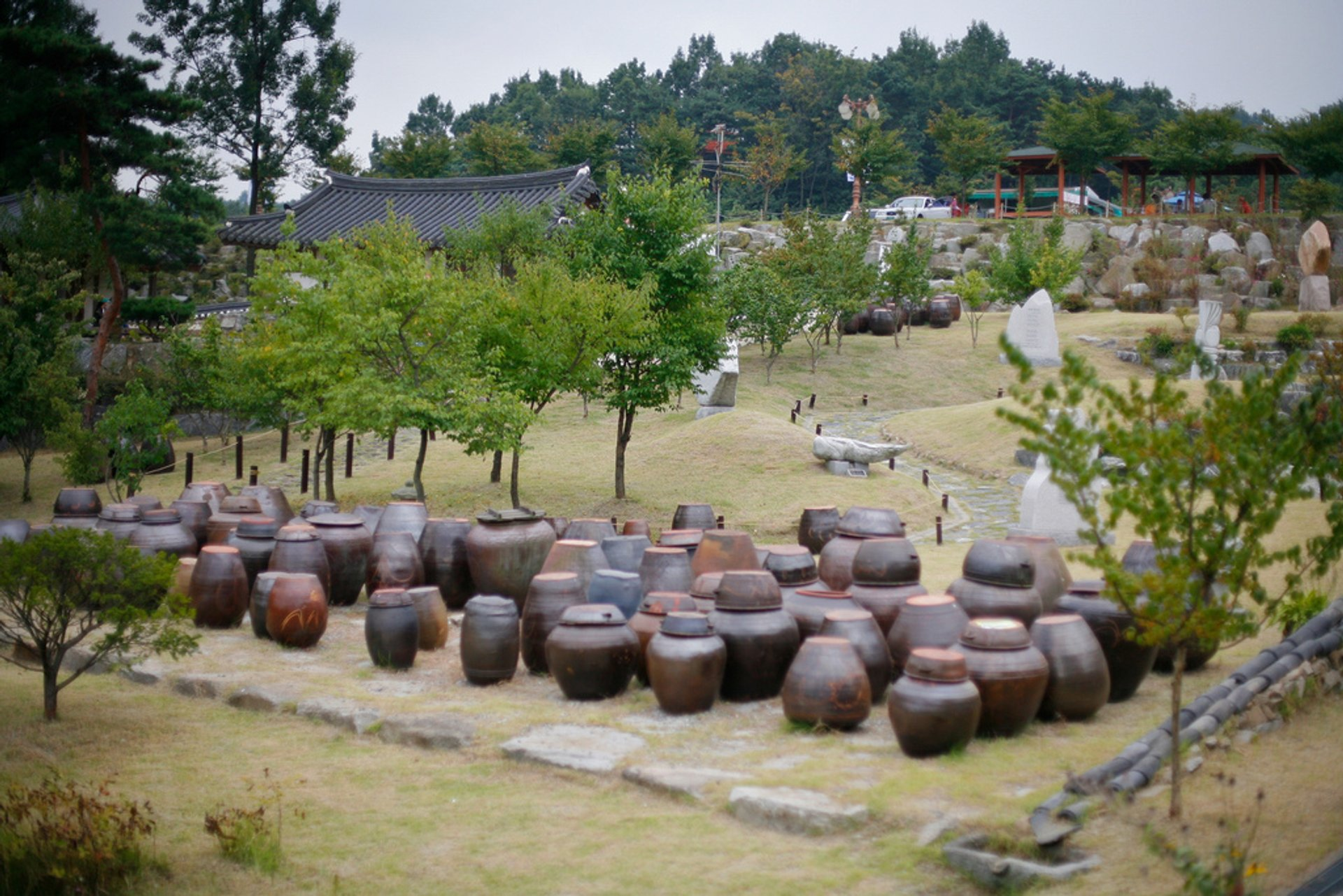 Best time for Traditional Villages (Agricultural Season) in South Korea 2019