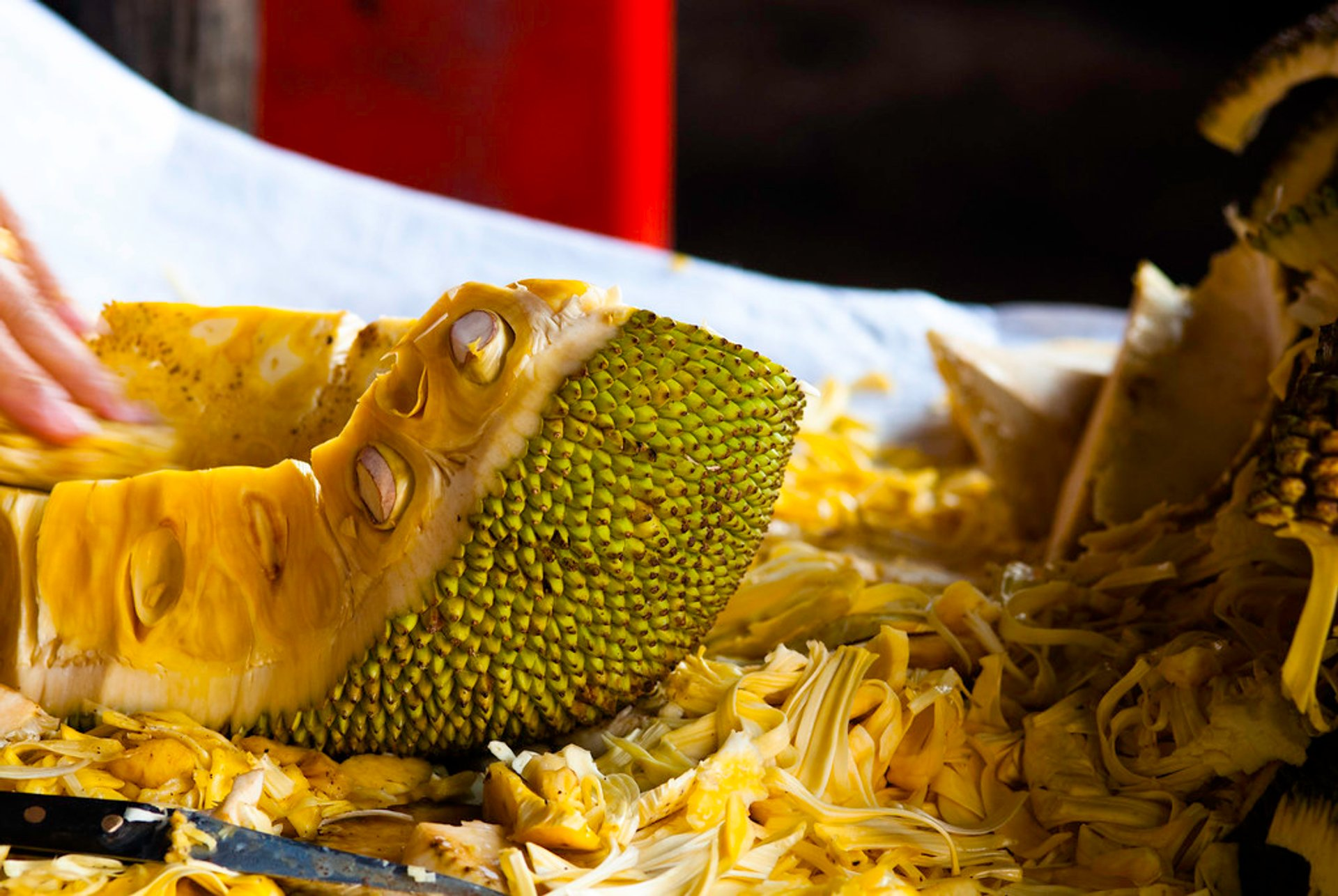 Durian Season in Cambodia 2020 - Best Time