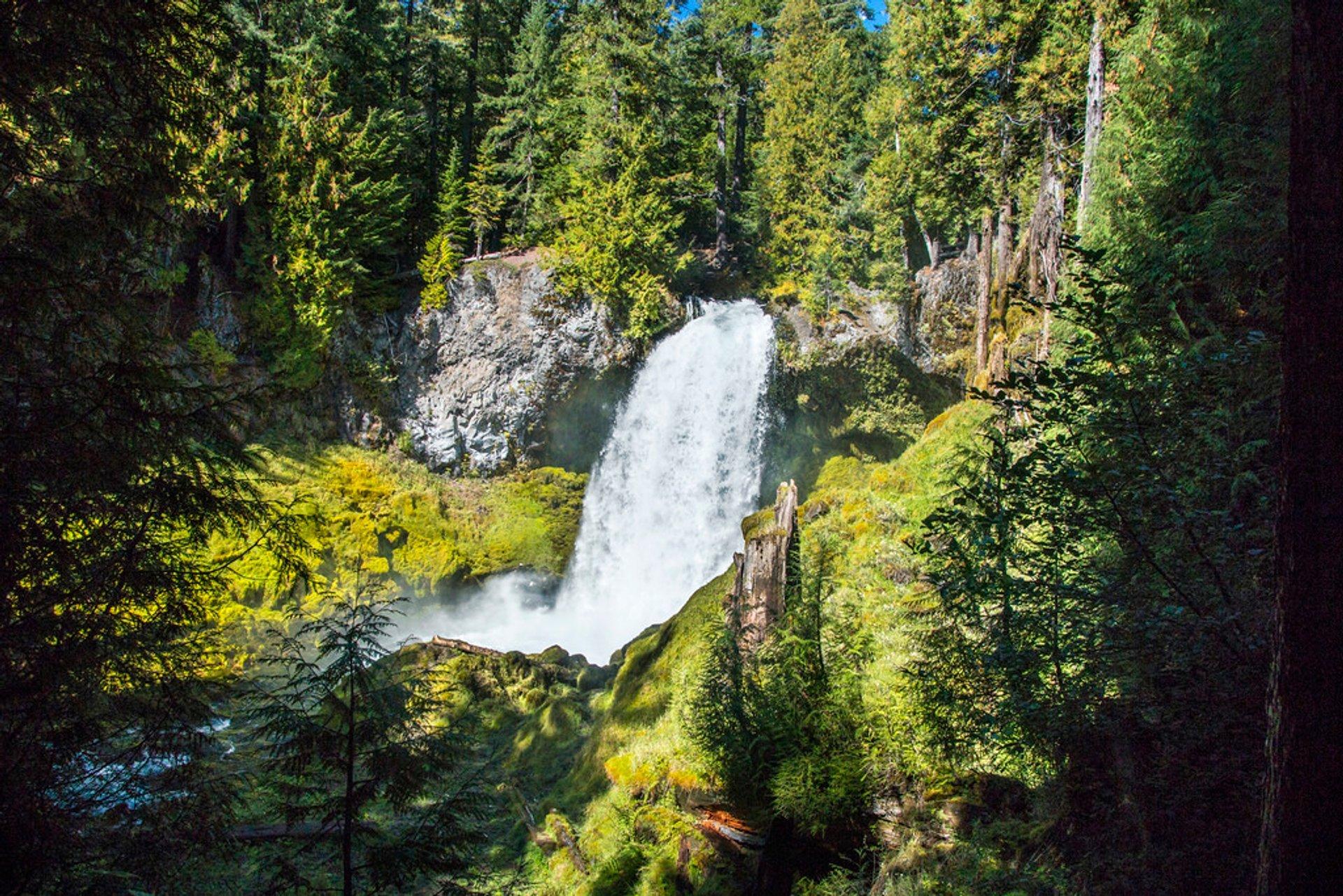 Sahalie and Koosah Falls in Portland 2020 - Best Time