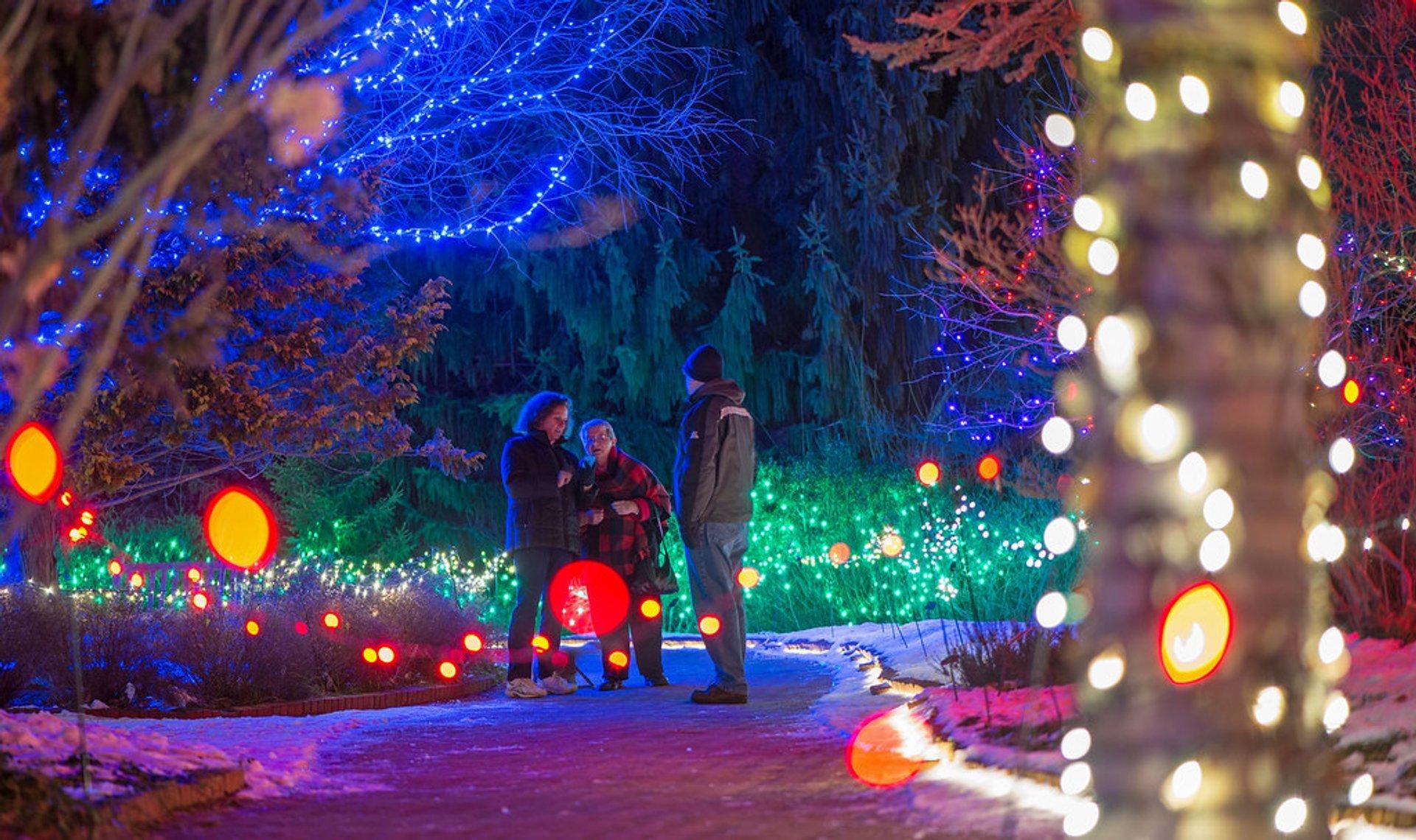 Christmas Lights in Massachusetts 2020 - Best Time