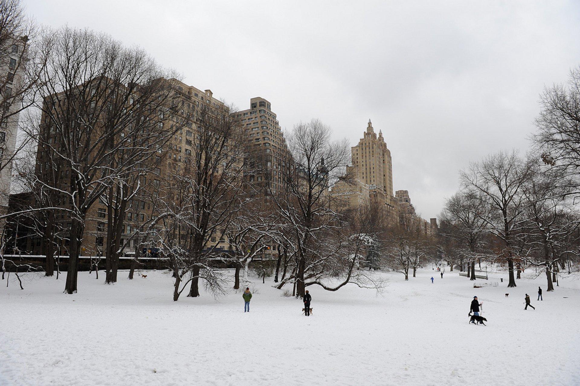 Winter in New York - Best Season 2019