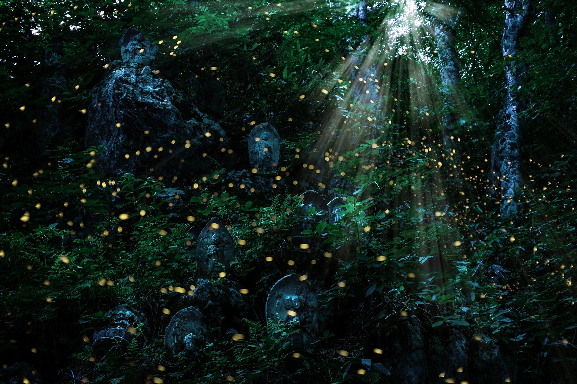 Firefly Festivals (Hotaru Matsuri) in Japan 2020 - Best Time