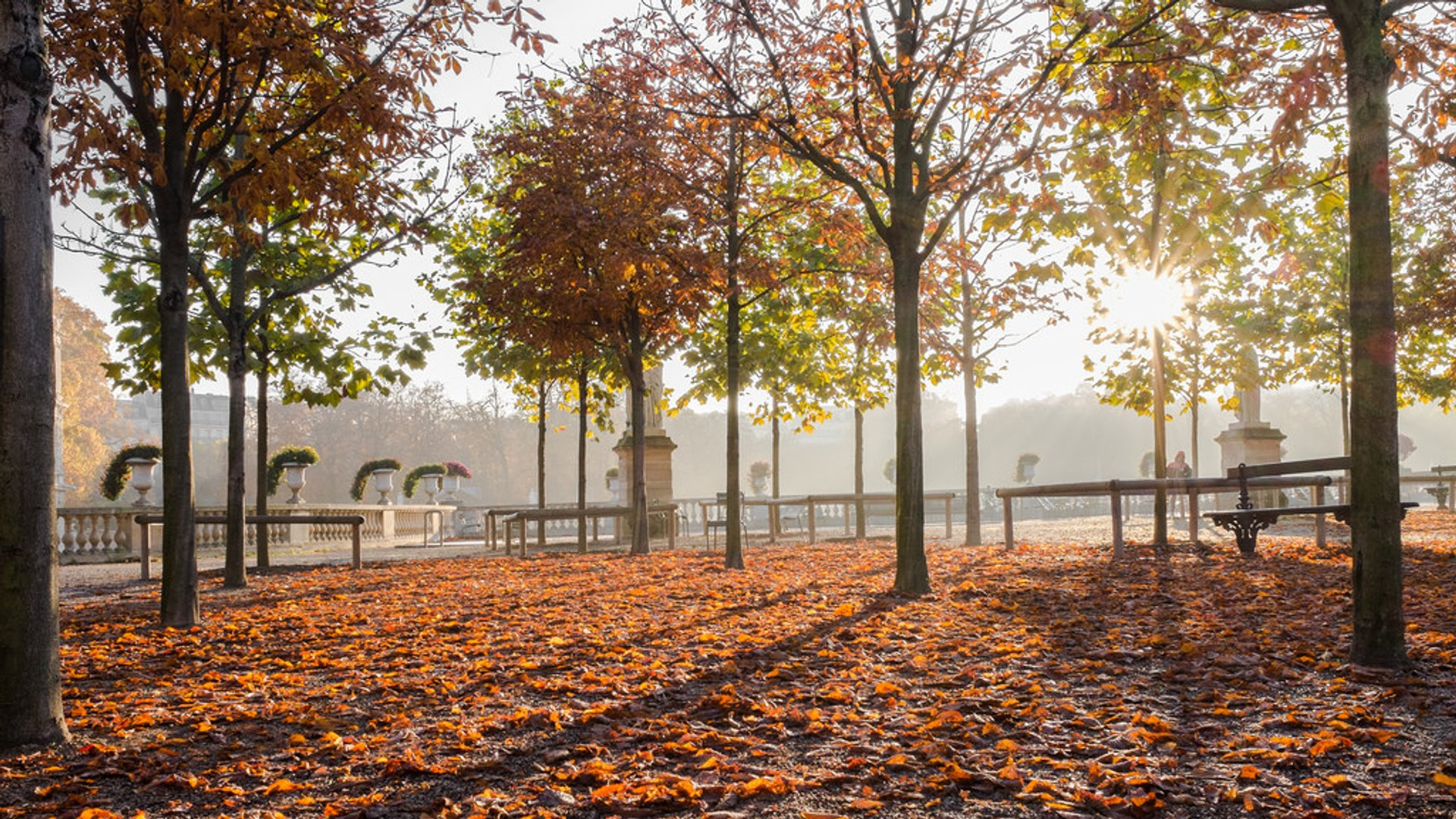 Parks and Gardens in Autumn Foliage in Paris 2019 - Best Time