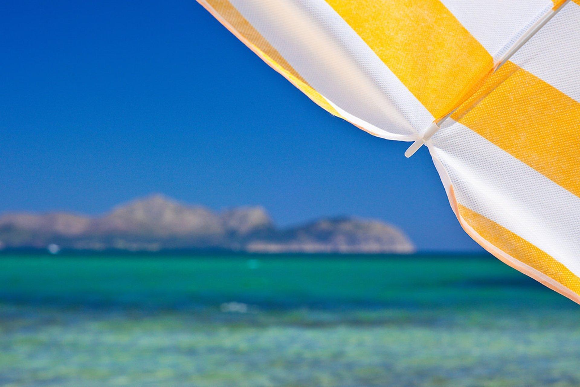 Beach Season in Mallorca 2019 - Best Time