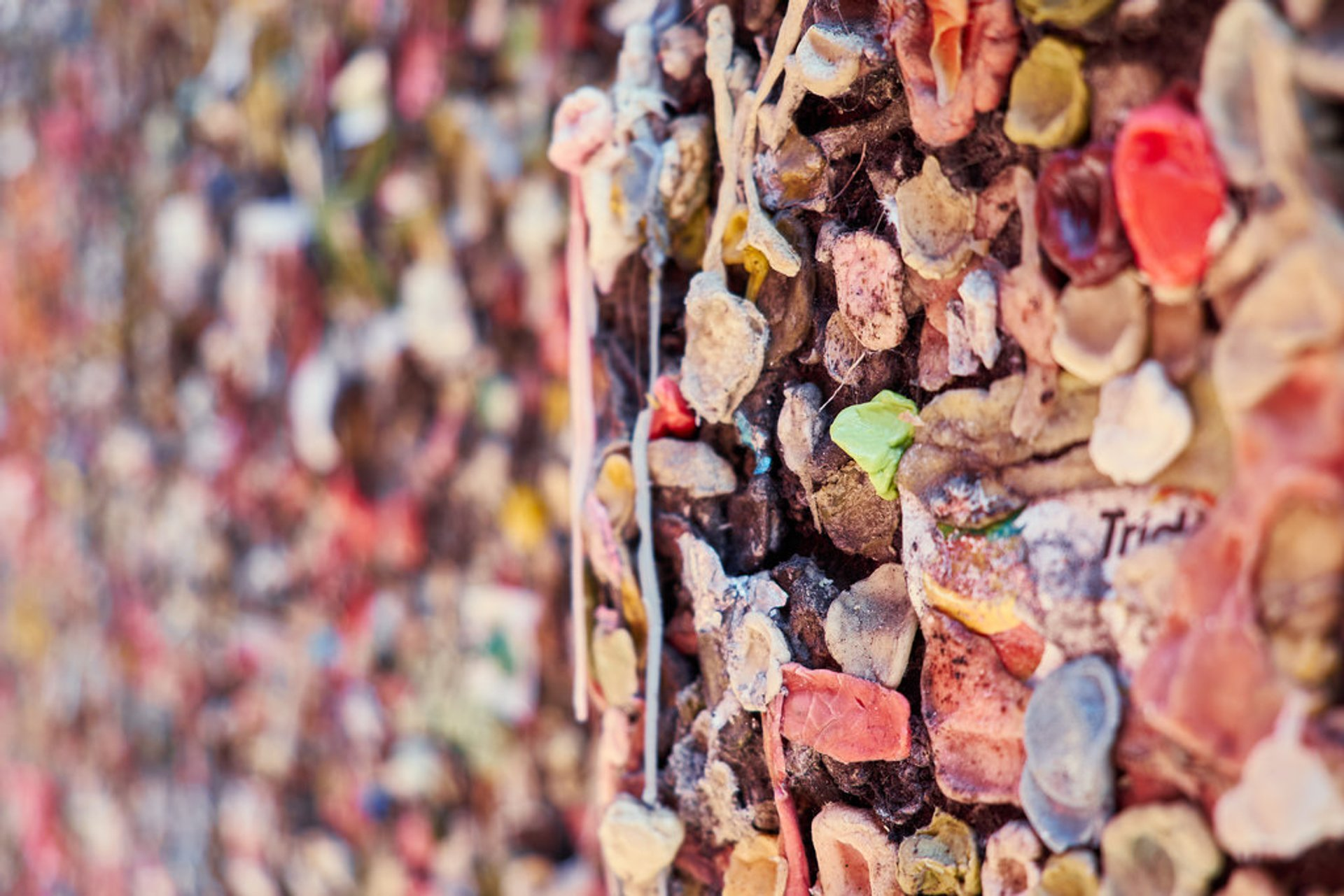 Bubblegum Alley in California 2019 - Best Time