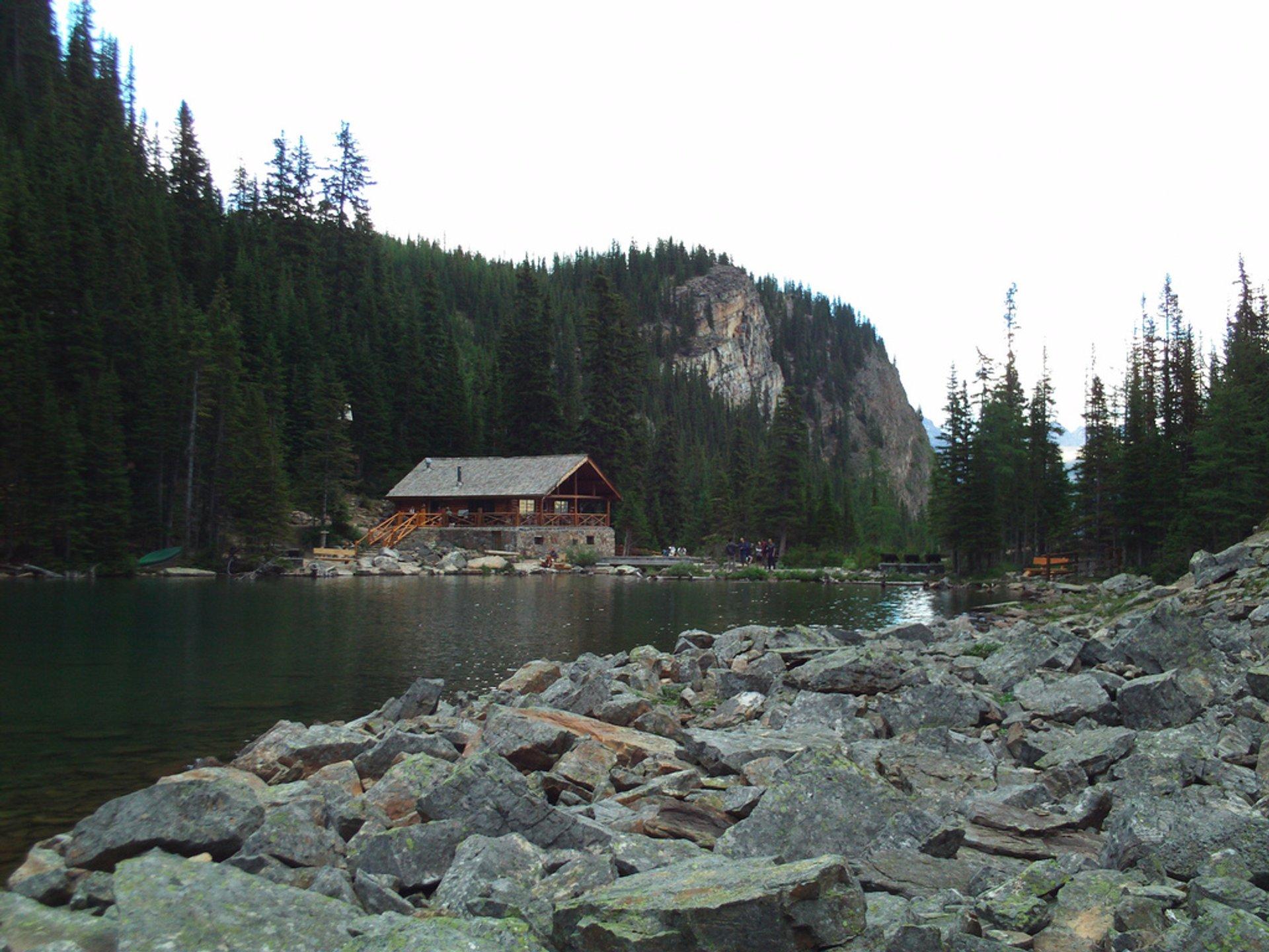 Lake Agnes Teahouse 2019