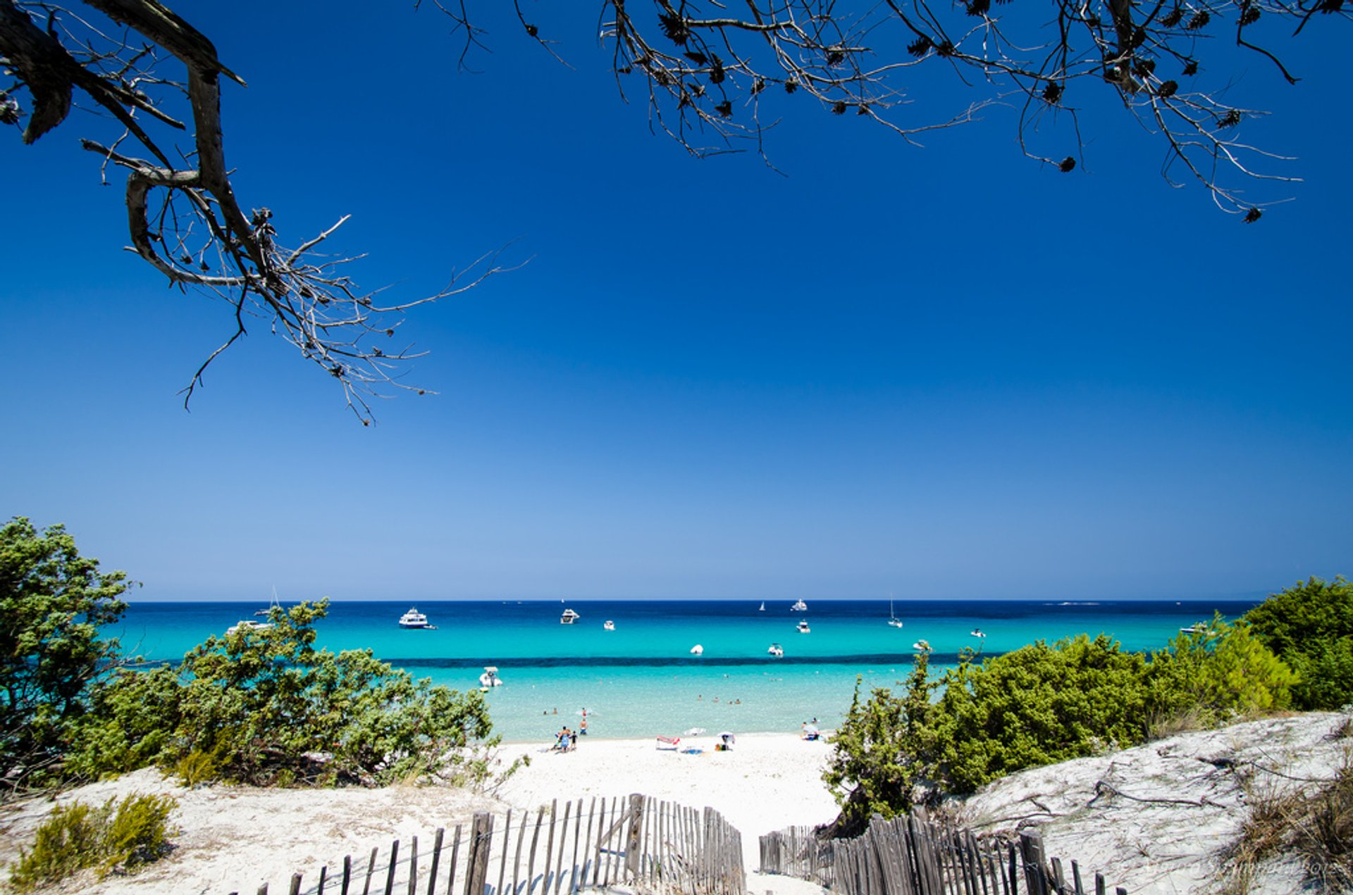 Best time to see Sun and Fun: Beach Season in Corsica 2019