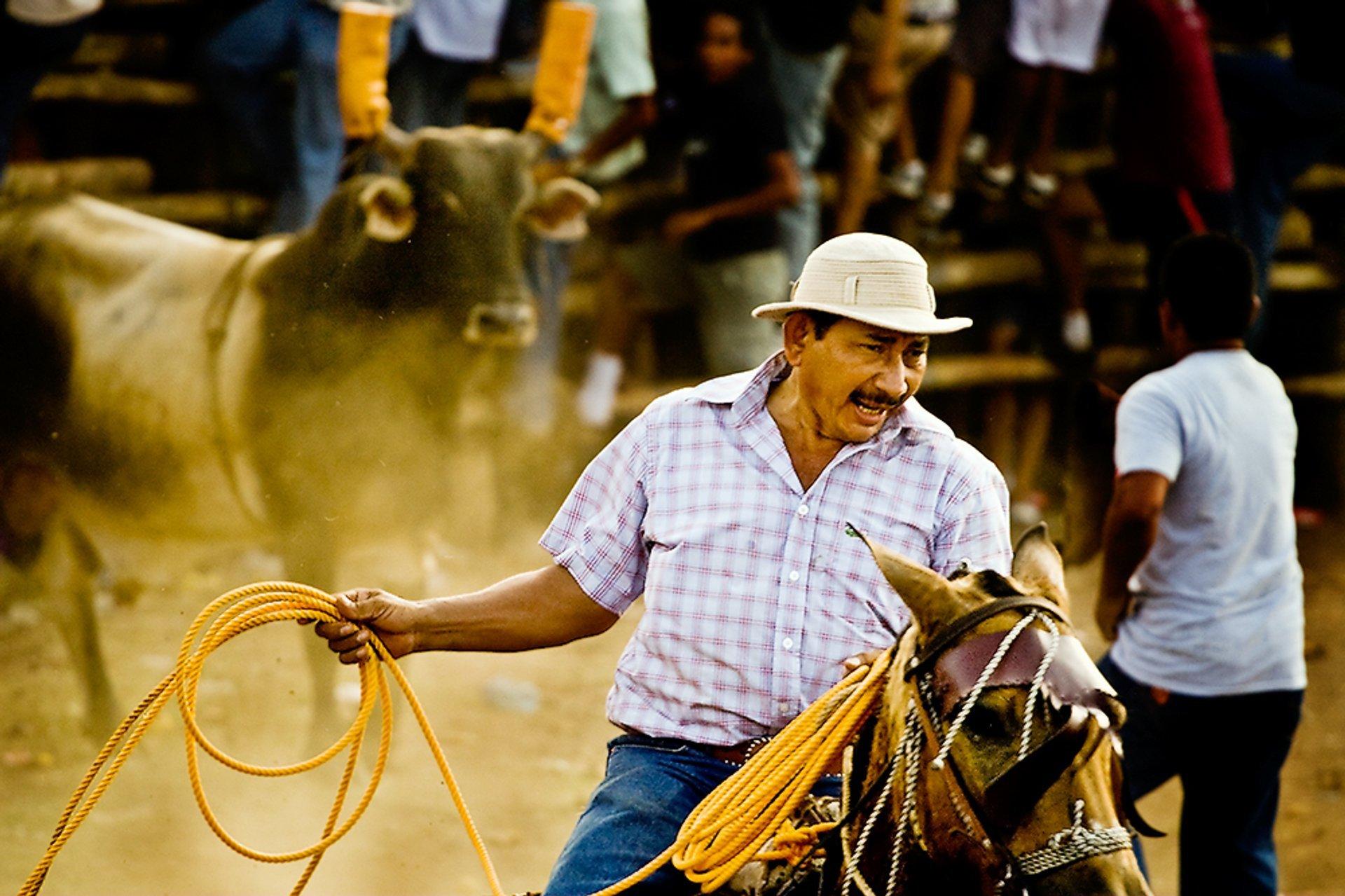 Best time to see Fiestas Típicas Nacionales Santa Cruz in Costa Rica 2020