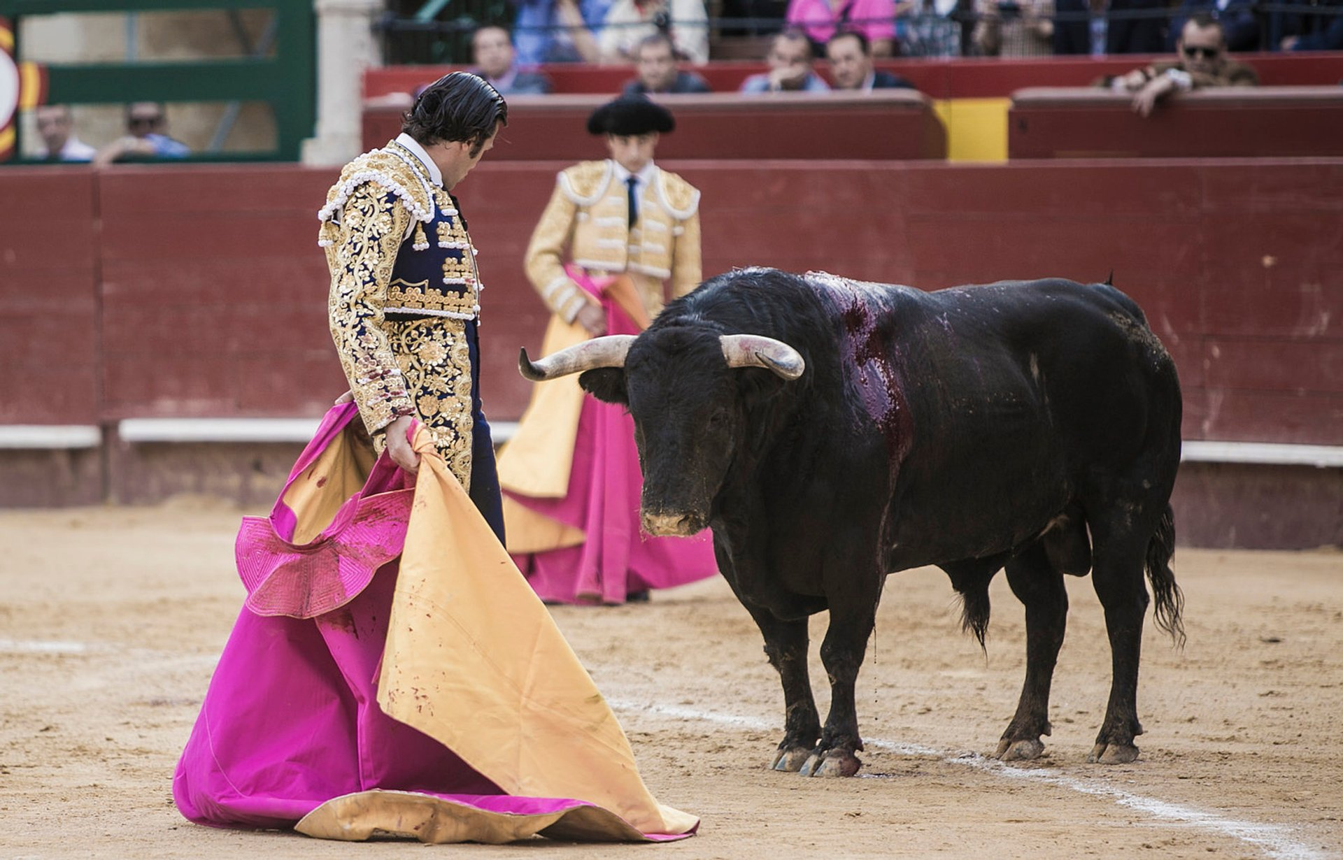 Corrida de Toros in Valencia 2020 - Best Time