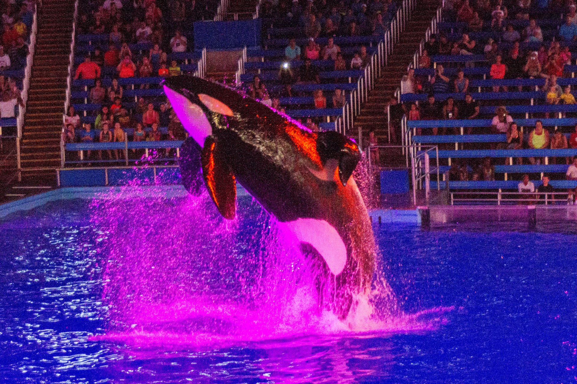 Sea World, San Antonio 2020