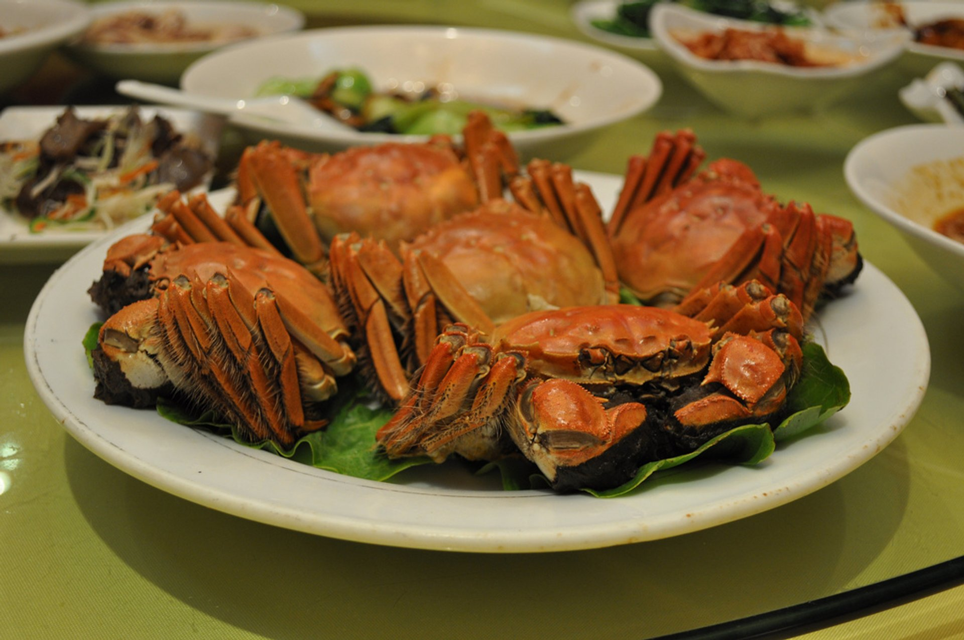 Hairy Crab Season in Shanghai - Best Time