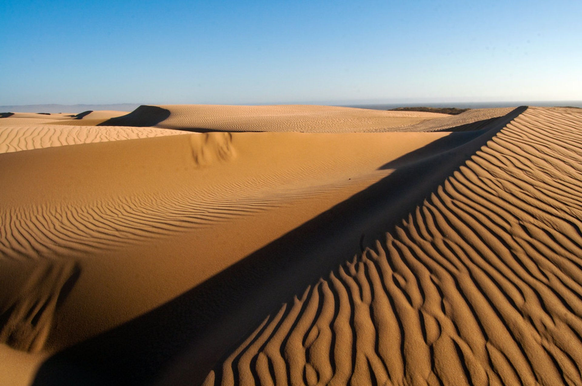 Best time for Guadalupe-Nipomo Dunes in California 2020