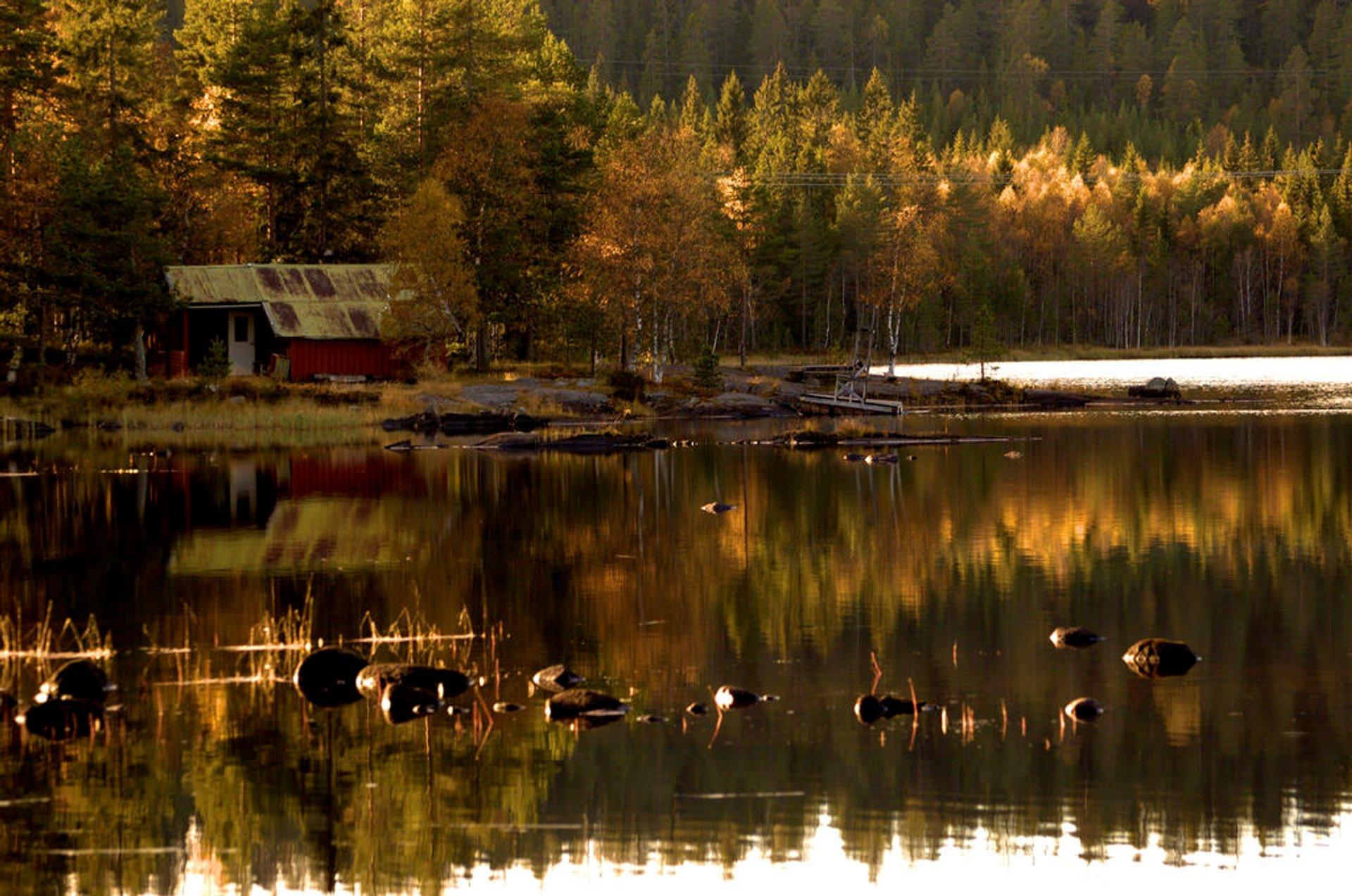 Autumn in Norway - Best Season 2020