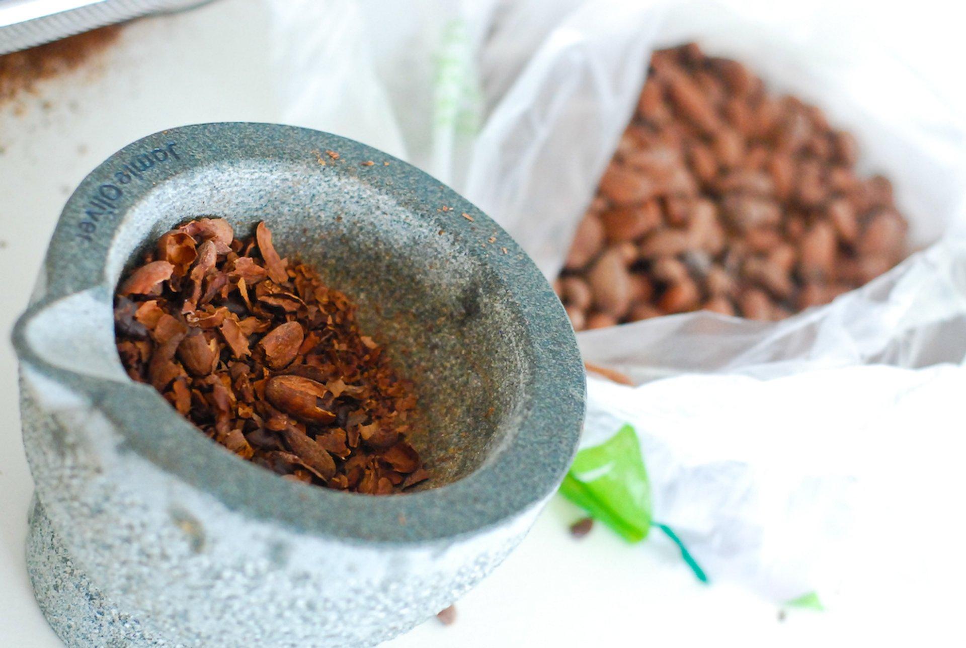 Cocoa Harvest Season in Madagascar - Best Season 2020