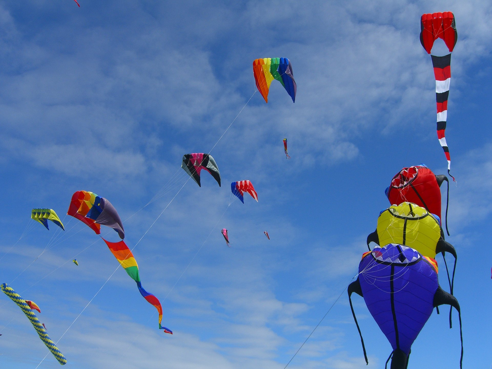 Washington State International Kite Festival in Seattle - Best Season 2020