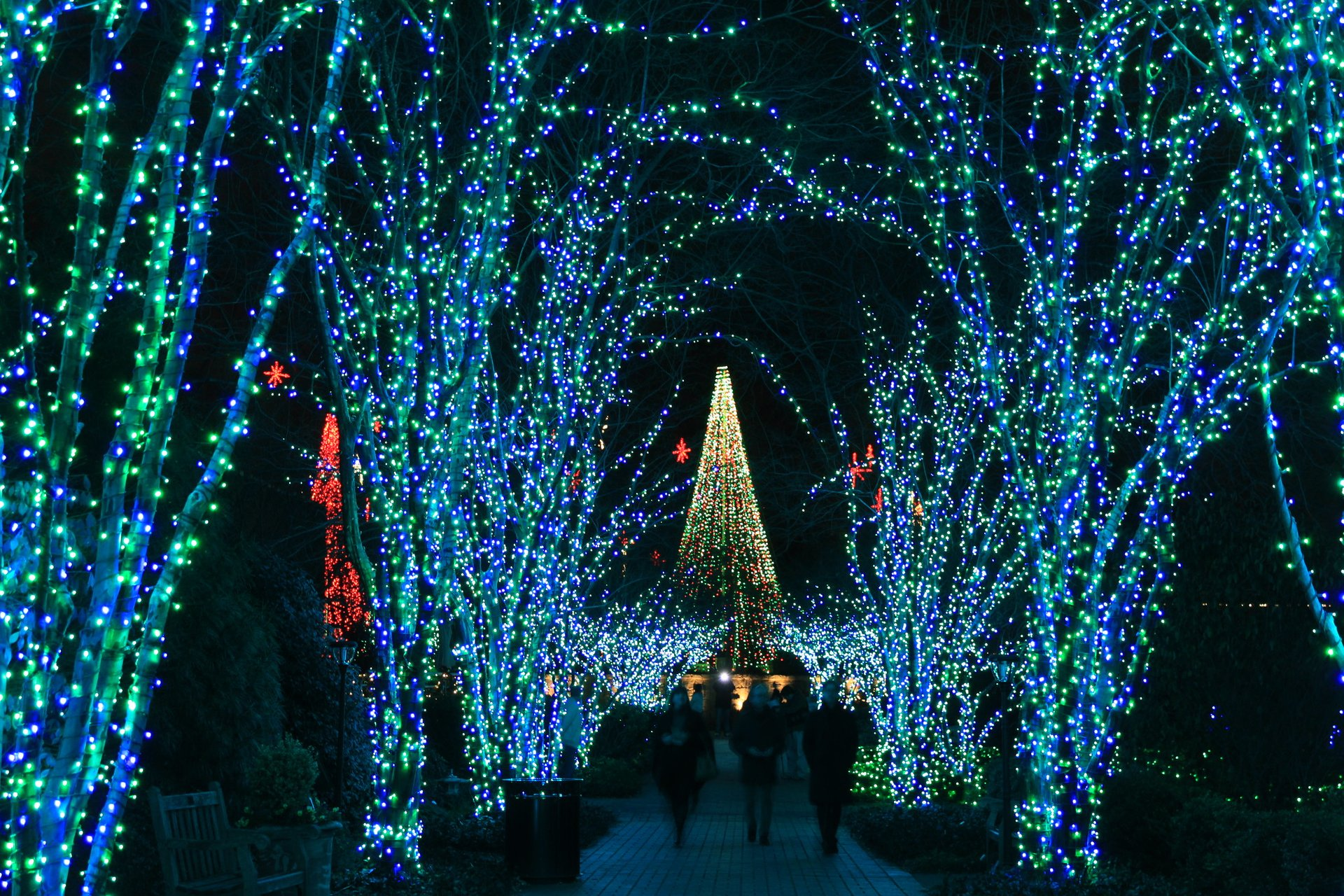 Christmas In Atlanta Ga 2021 Christmas Lights In Atlanta 2021 2022 Dates