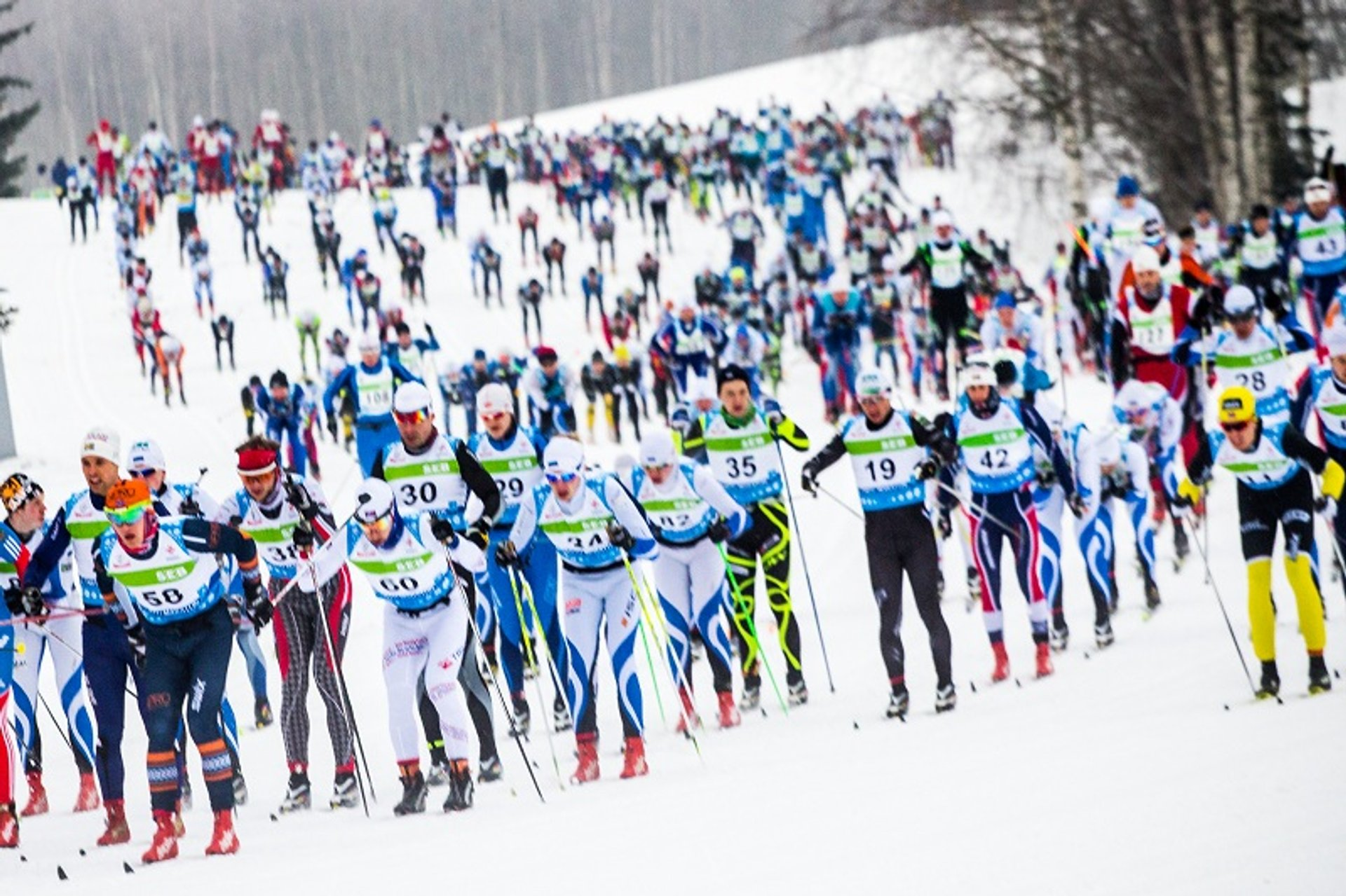Tartu Ski Marathon in Estonia - Best Season 2020