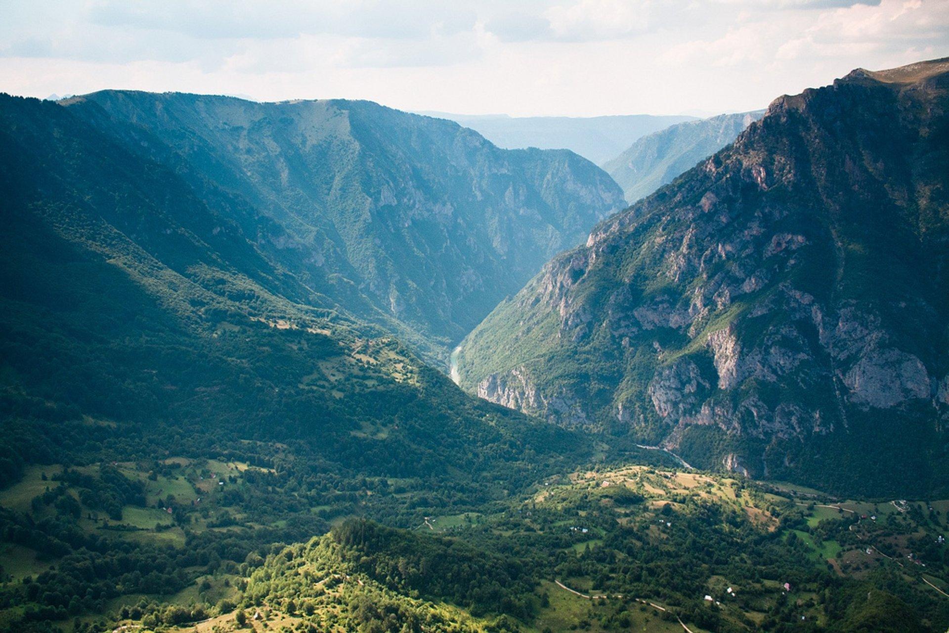 Tara Canyon 2019