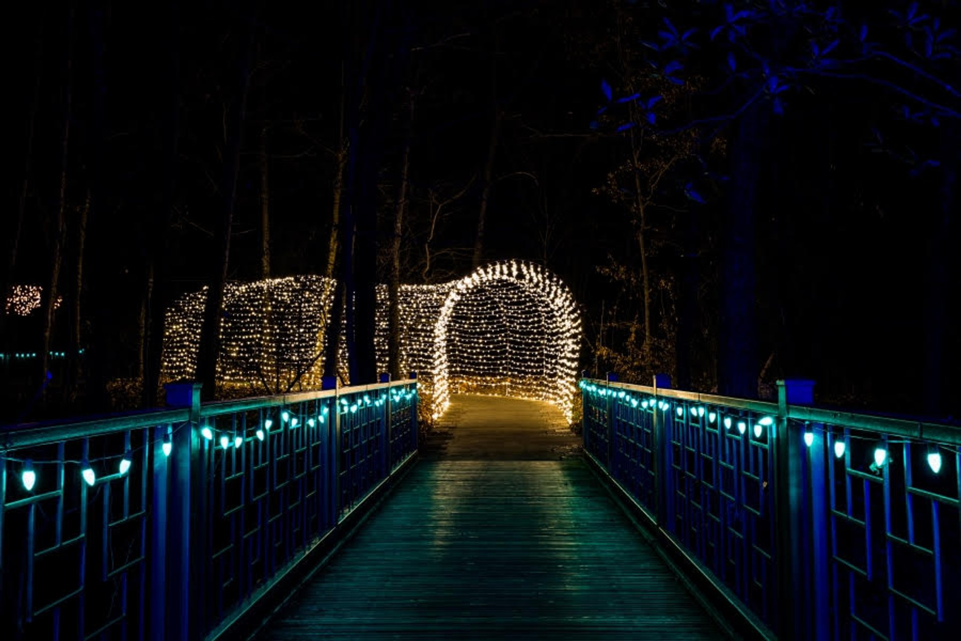 Powell Gardens Festival of Lights in Midwest - Best Season 2020