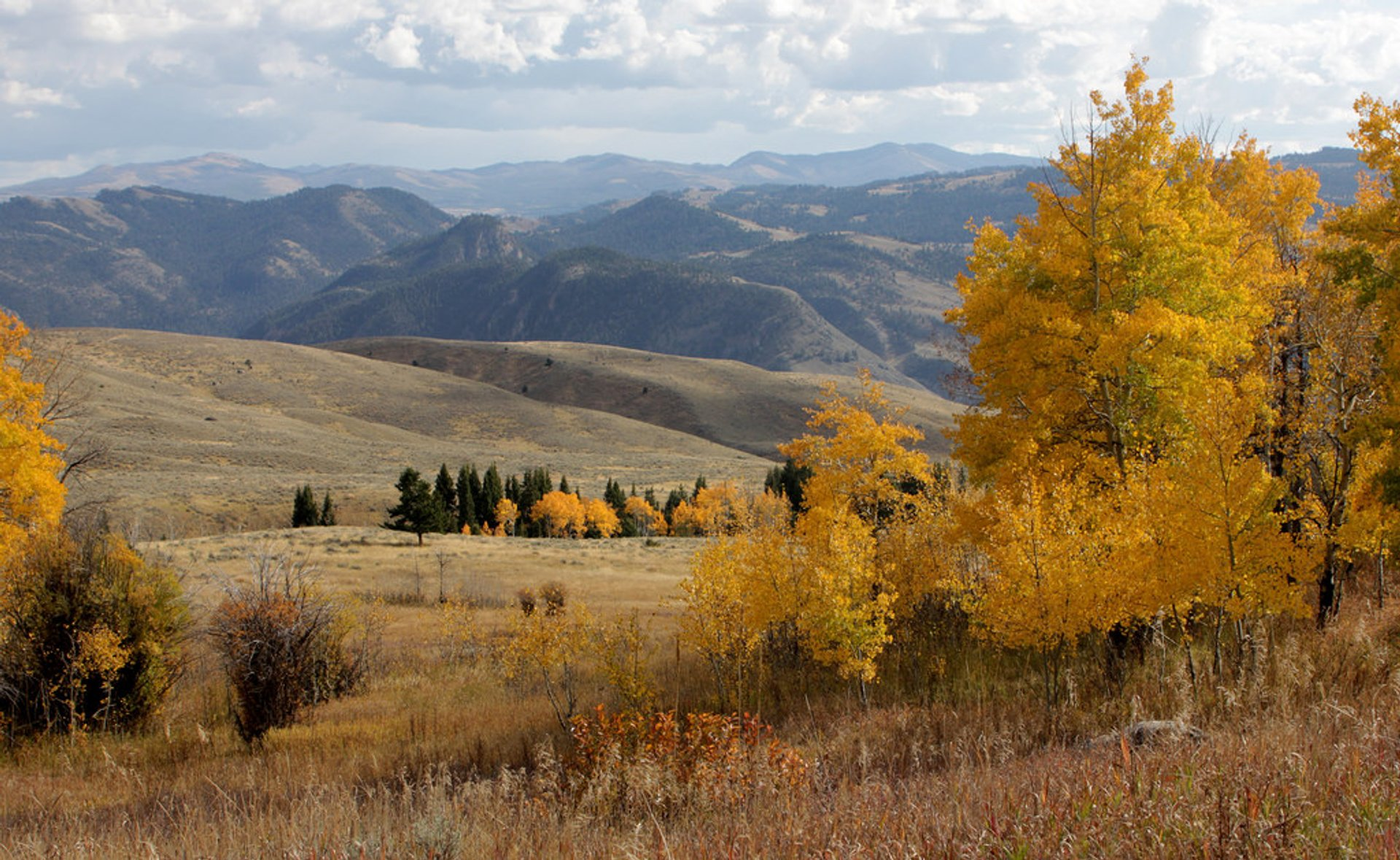 Autumn in Yellowstone National Park 2020 - Best Time