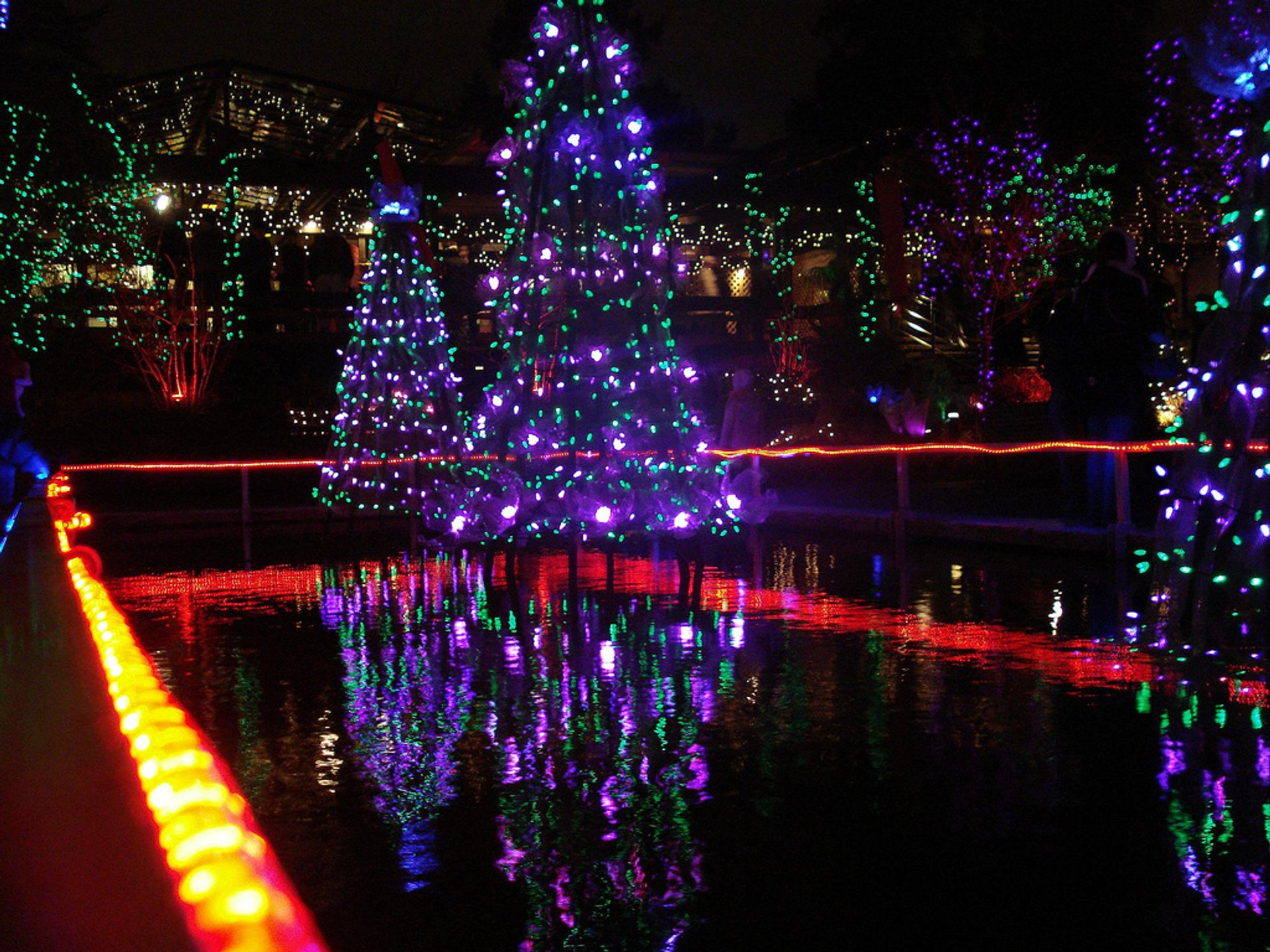 Best time for VanDusen Festival of Lights 2020