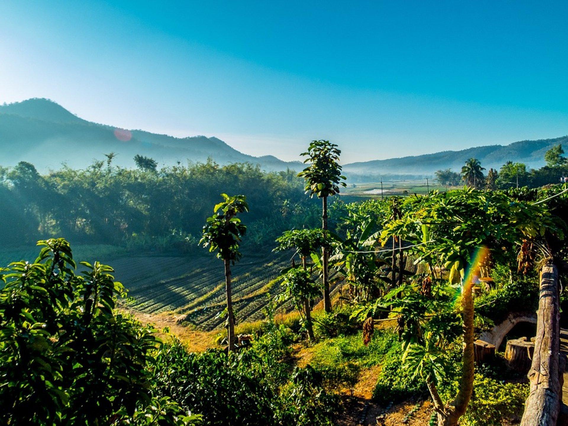 Hot Season (Summer) in Thailand 2020 - Best Time
